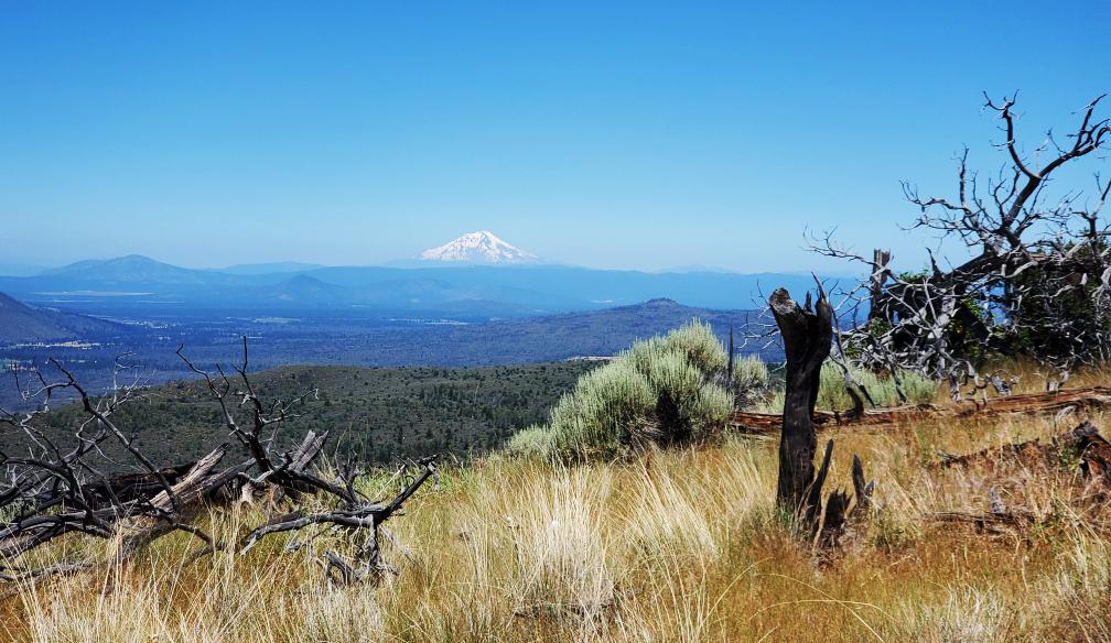 PCT-Day-62-Mount-Shasta.jpg