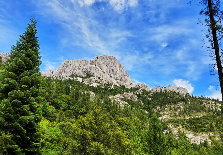 PCT-Day-66-Moutain.jpg