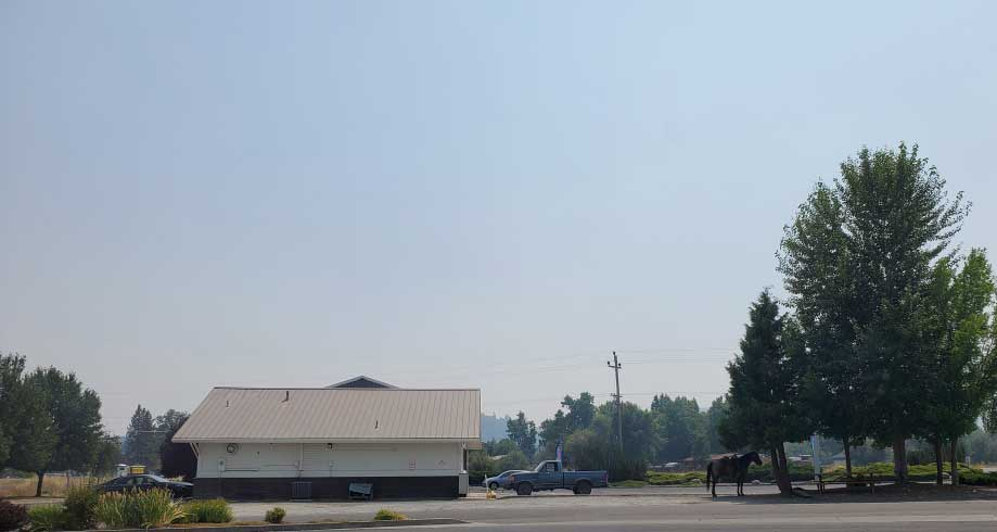 PCT-Day-68-Horse-in-Parking.jpg