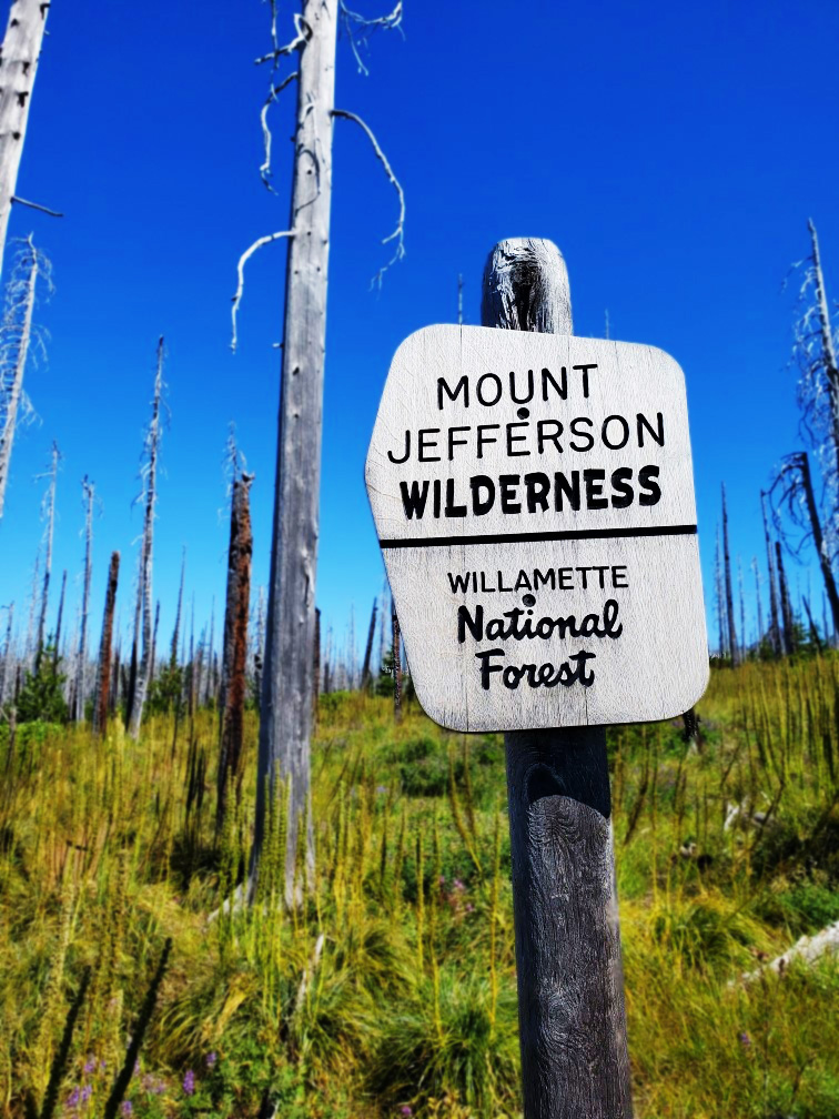 pct-day-74-mount-jefferson-wilderness.jpg