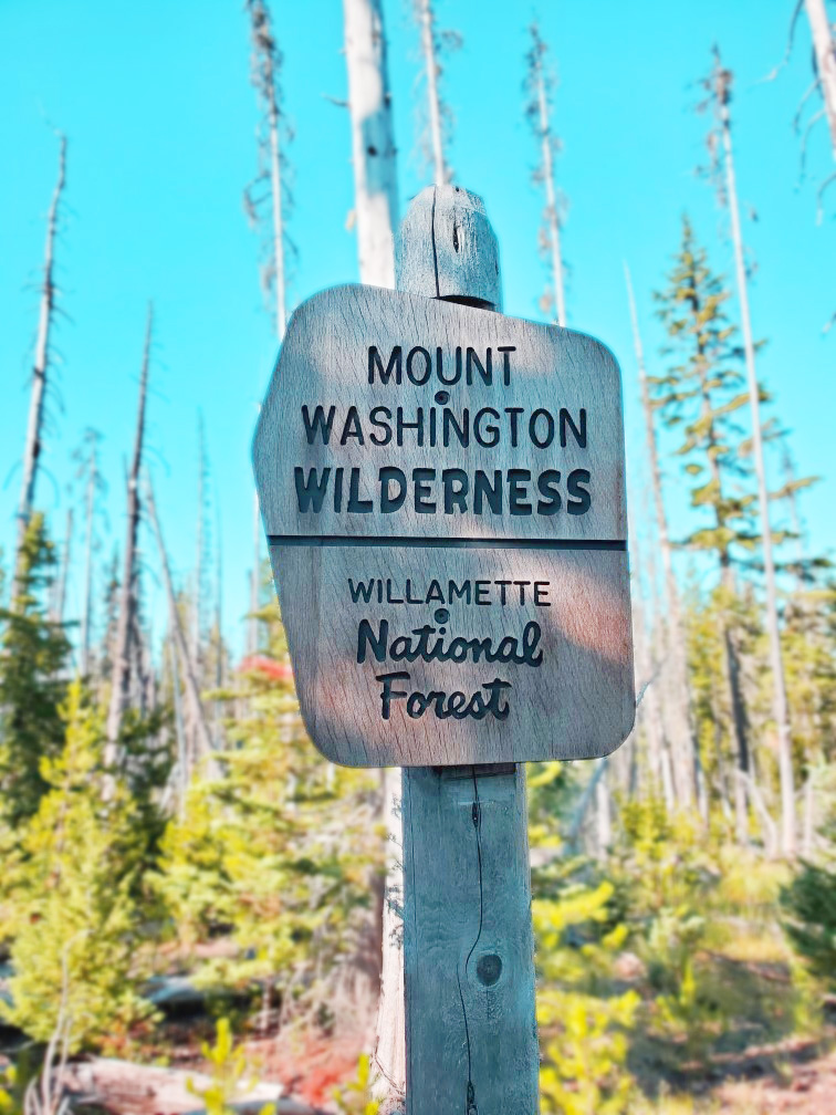 pct-day-74-mount-washington-wilderness.jpg