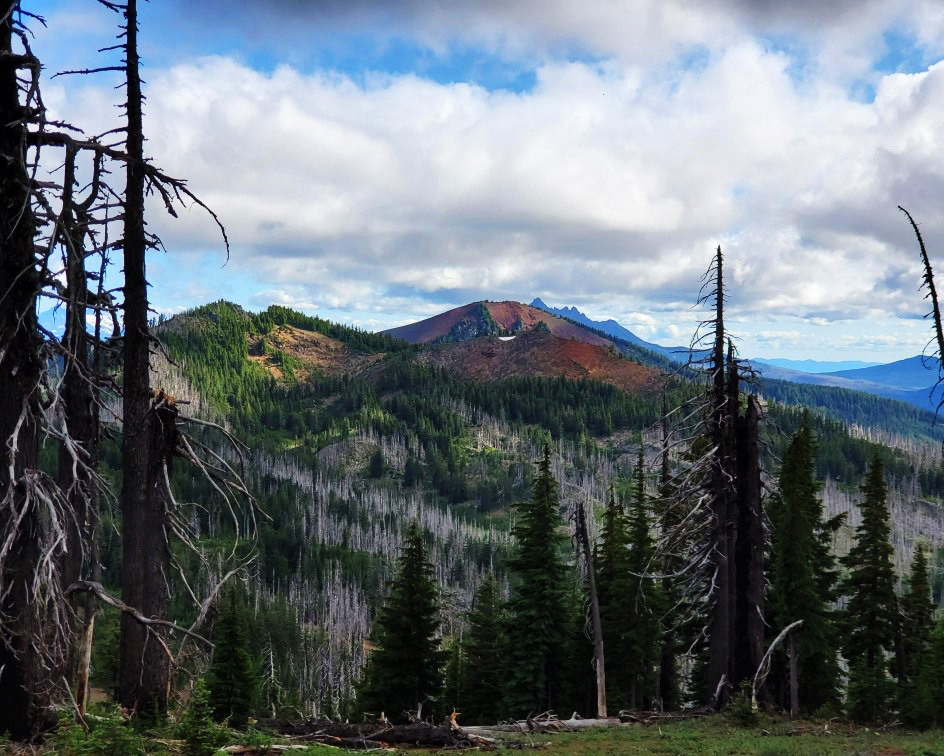 pct-day-74-mount-jefferson-view.jpg