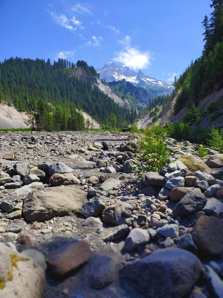 pct-day-77-creek-bed-looking-at-mountain.jpg