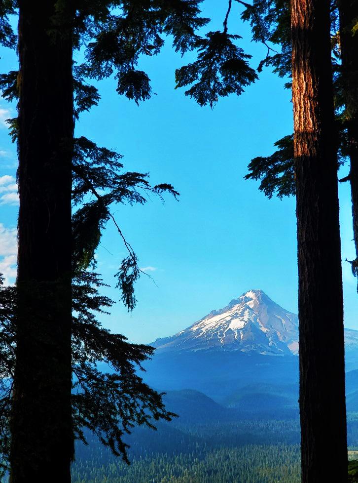 pct-day-76-mountain.jpg