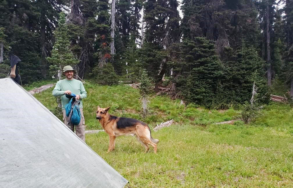 pct-day-81-campsite.jpg