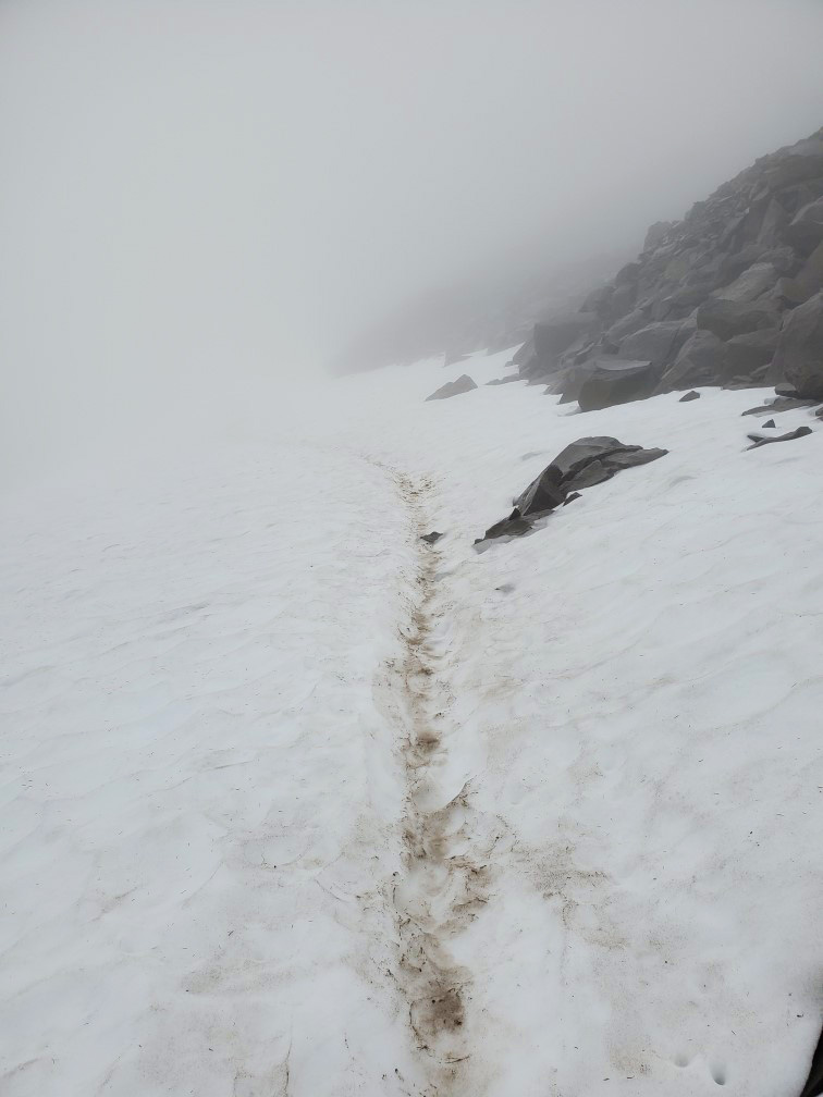 pct-day-83-snow-trail.jpg