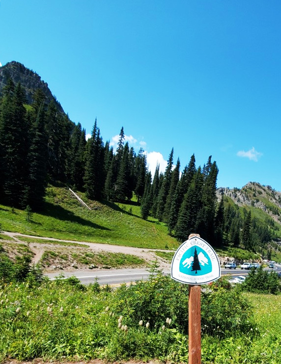 pct-day-84-pacific-crest-trail-mile-marker.jpg