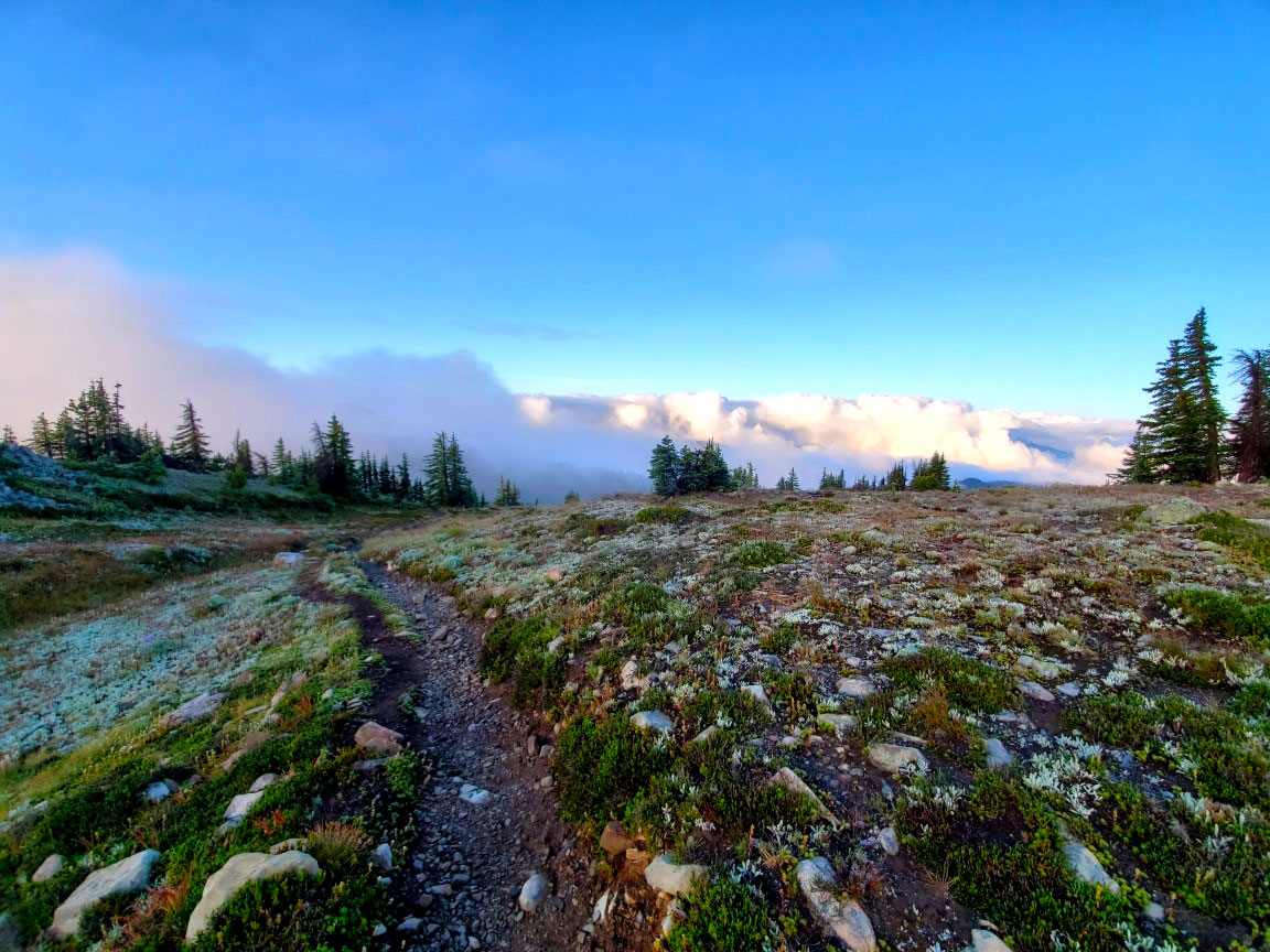 pct-trail-to-mountains.jpg