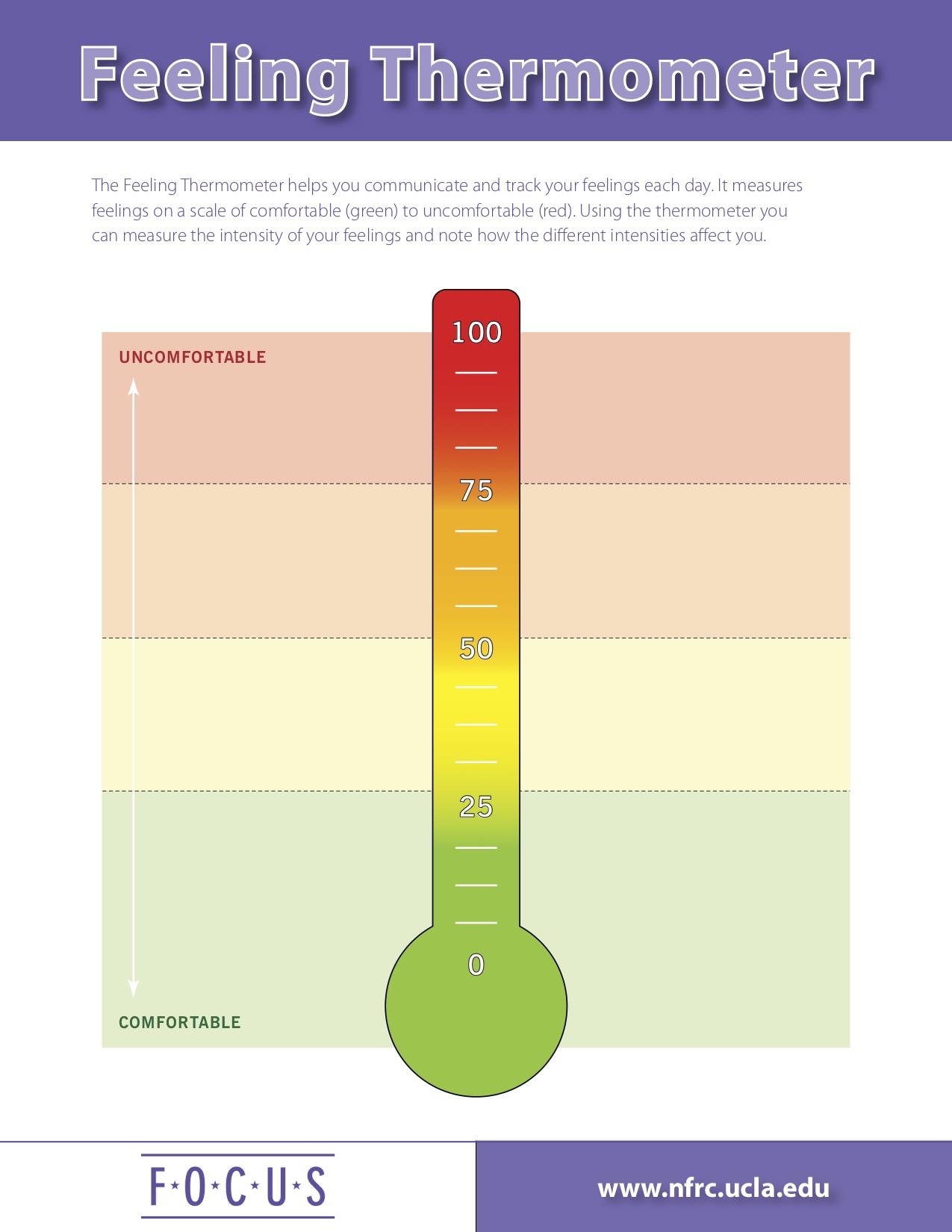 Feeling Thermometer.jpg