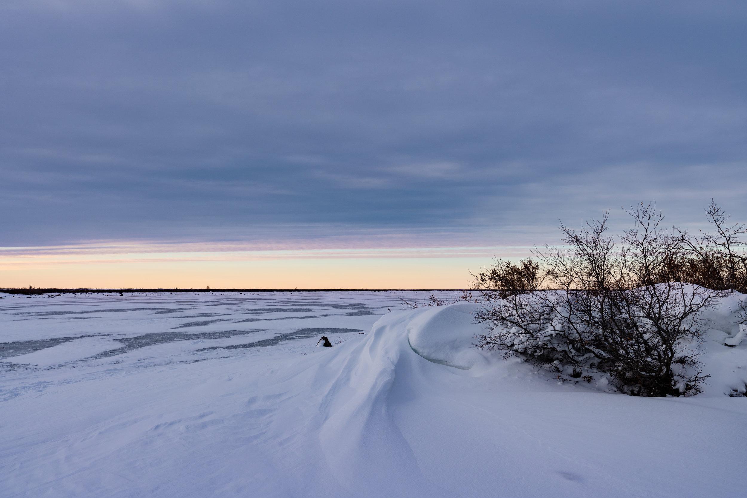 Arctic Bliss