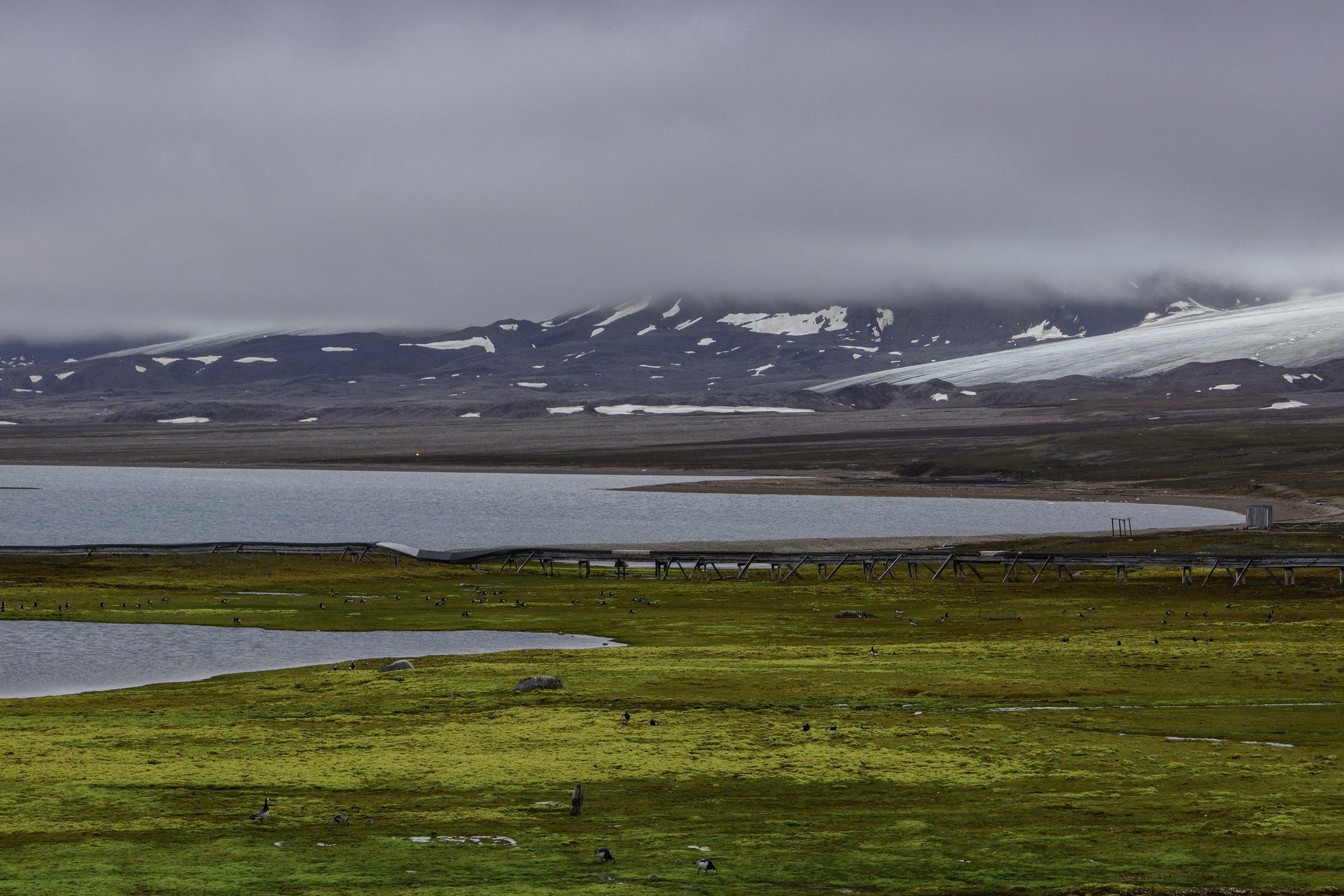 Ny-Ålesund Coast