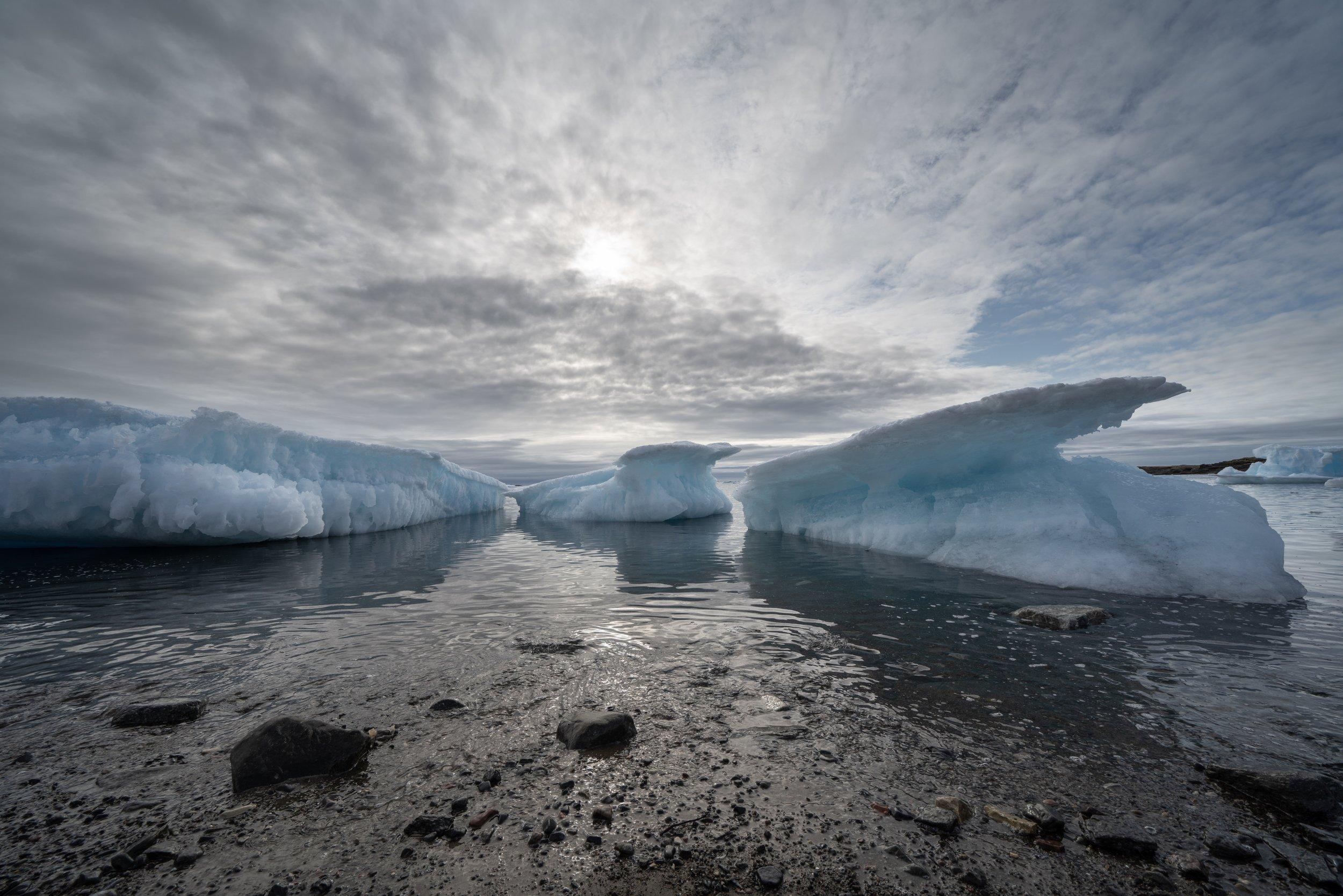 Iceberg Gathering