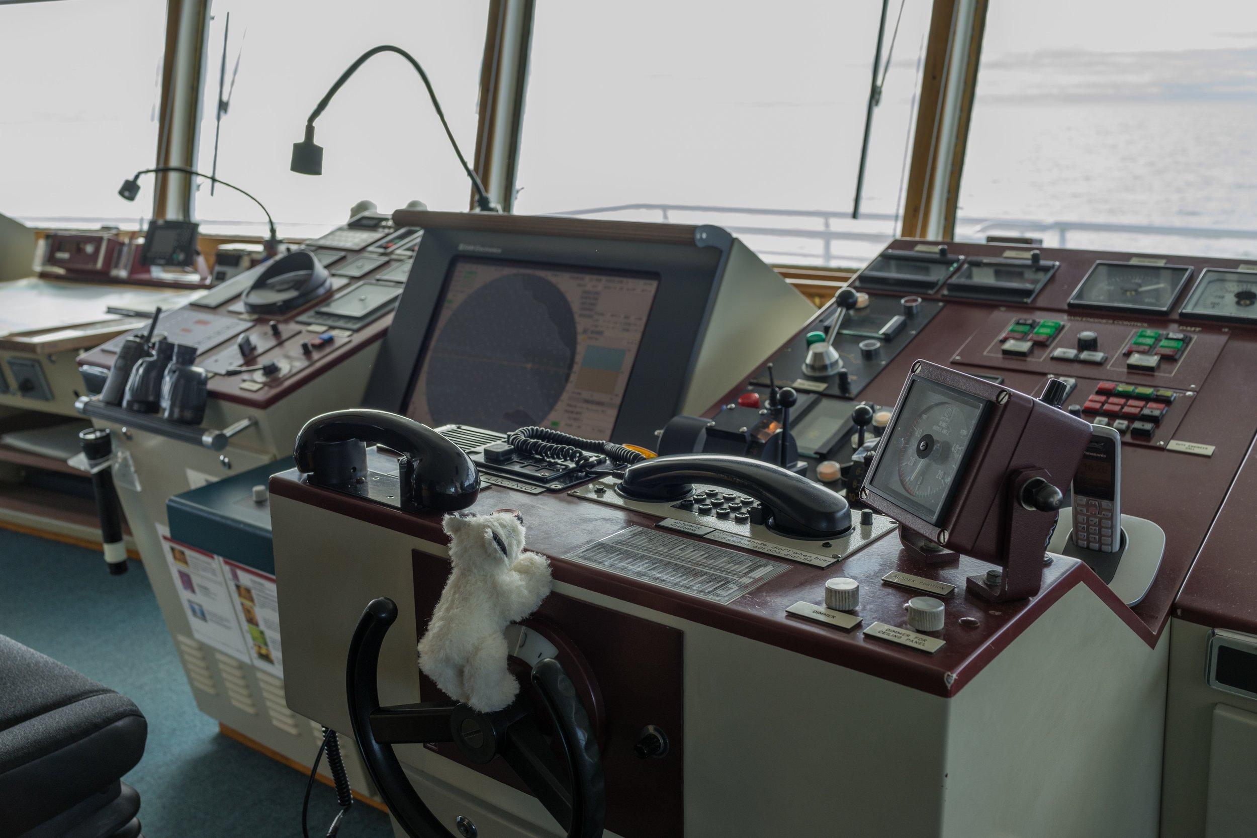 71°13'N   178°54'E ● MV Hanseatic   Wrangel Island   Russia