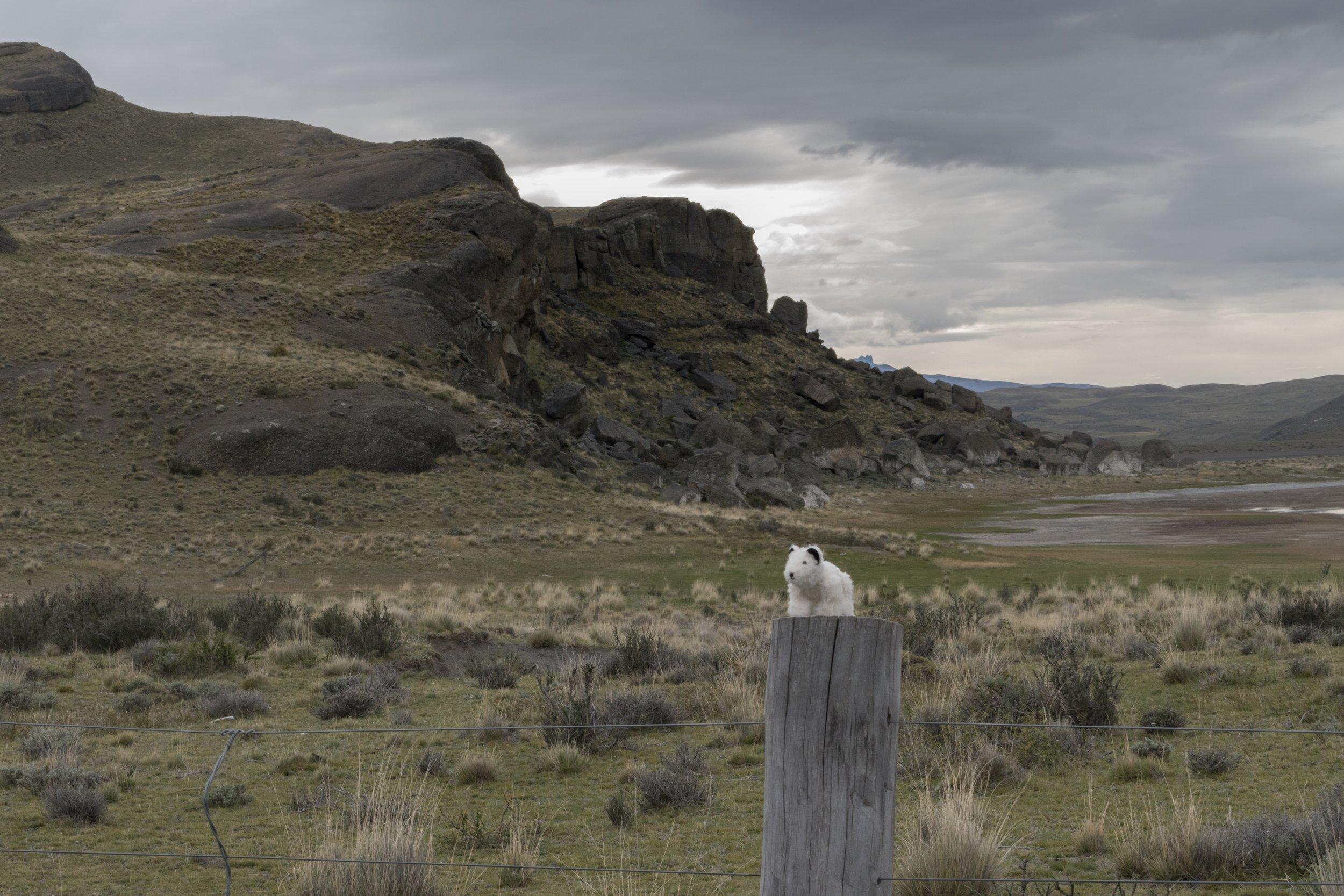 51°43'S   72°30'W ● Torres Del Paine   Chile