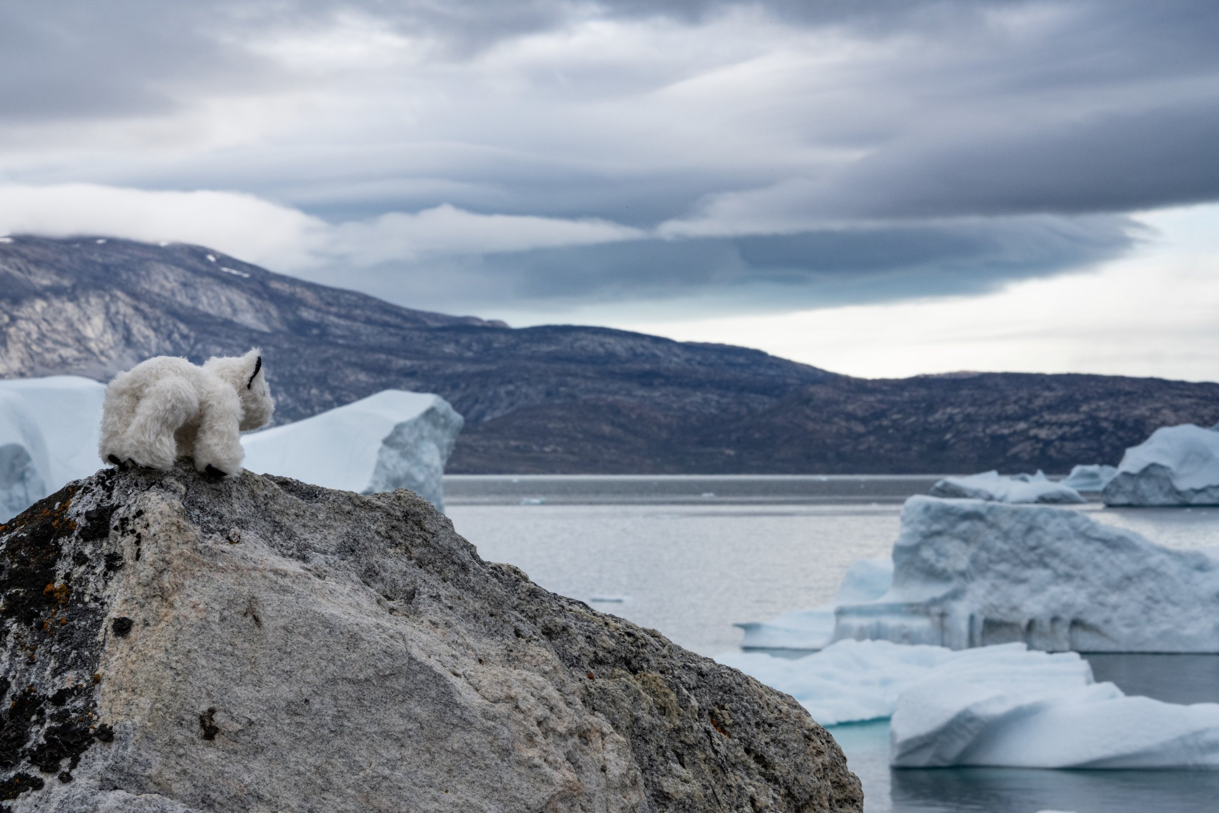 70°40'N | 51°24'W ● Storøen | Greenland