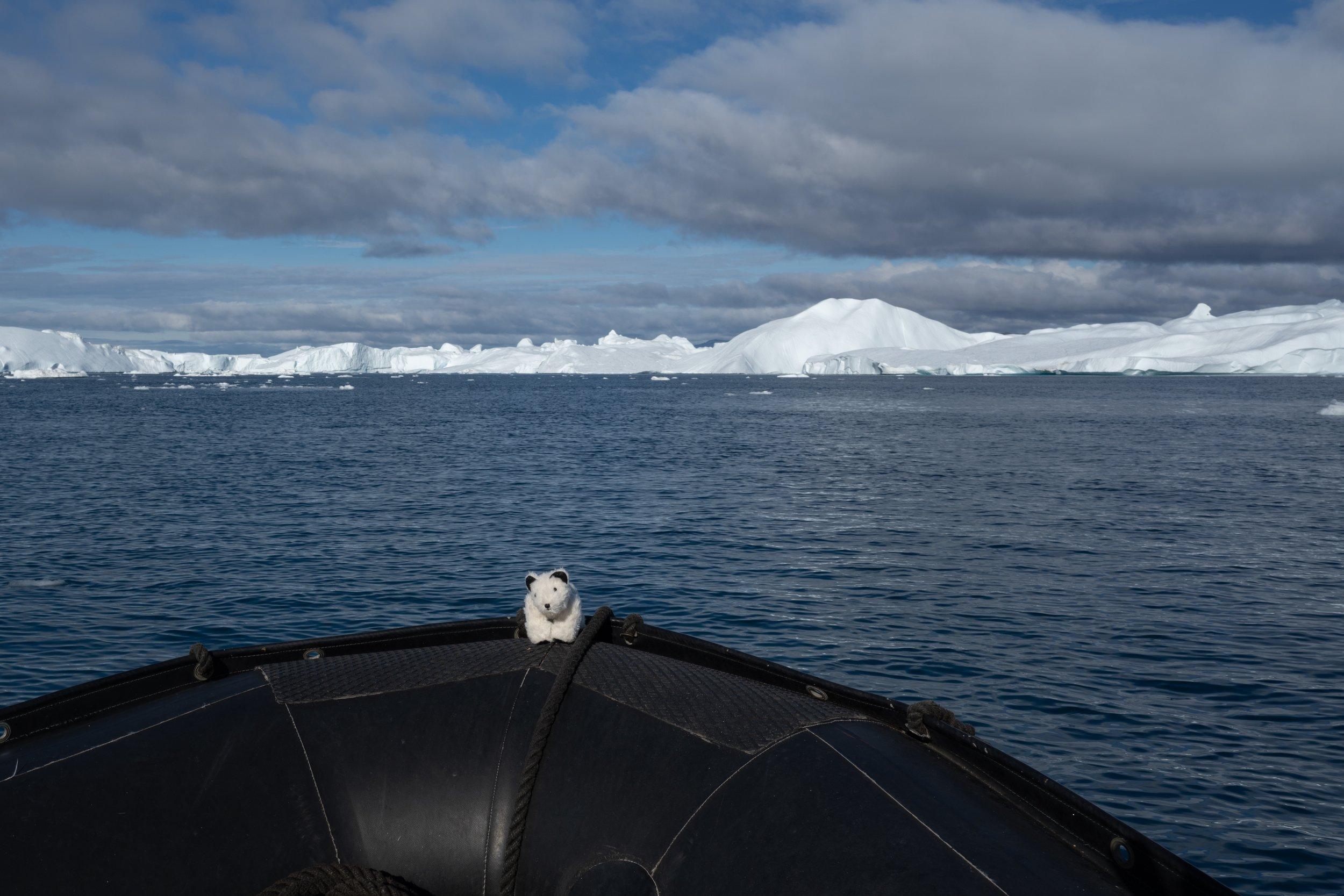69°16'N   51°17'W ● Ilulissat   Greenland