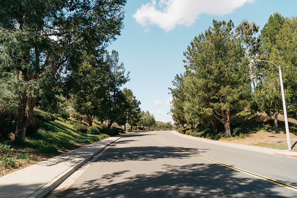 Trees and nature line the streets of Lake Hills Community