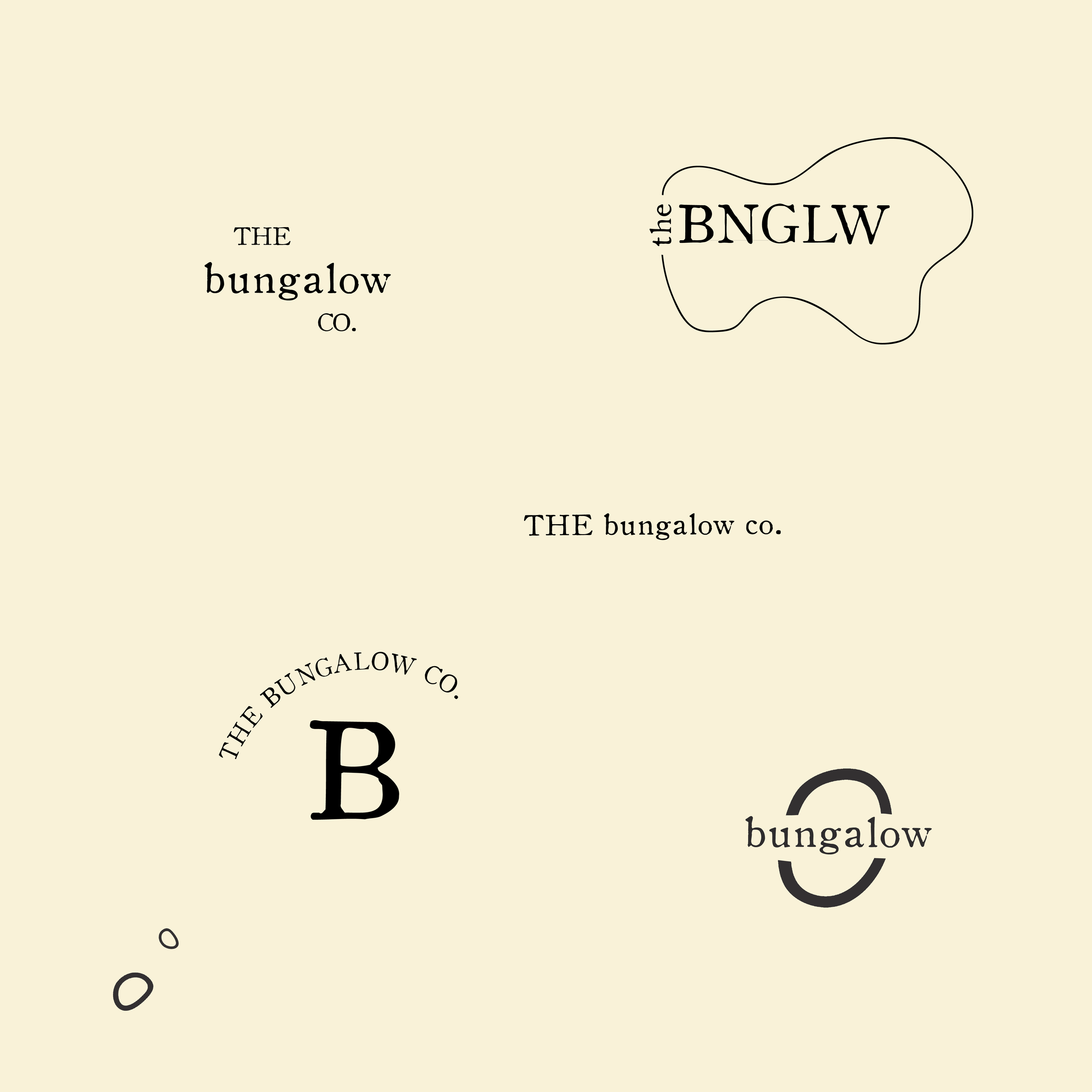 paige-leahy-blank-paige-design-branding-services-and-brand-identity-6