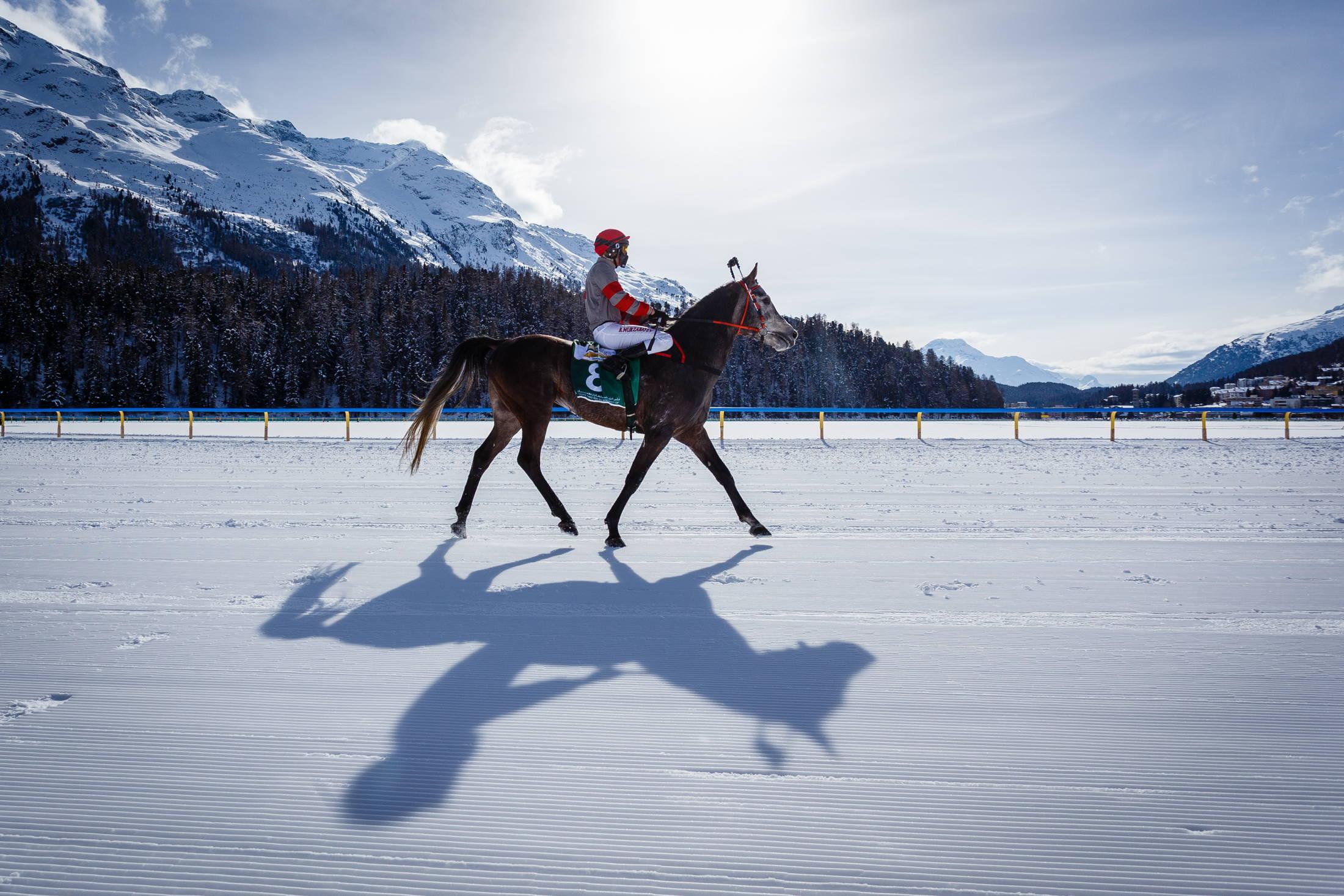 The White Turf Races 2017 in Sankt Moritz
