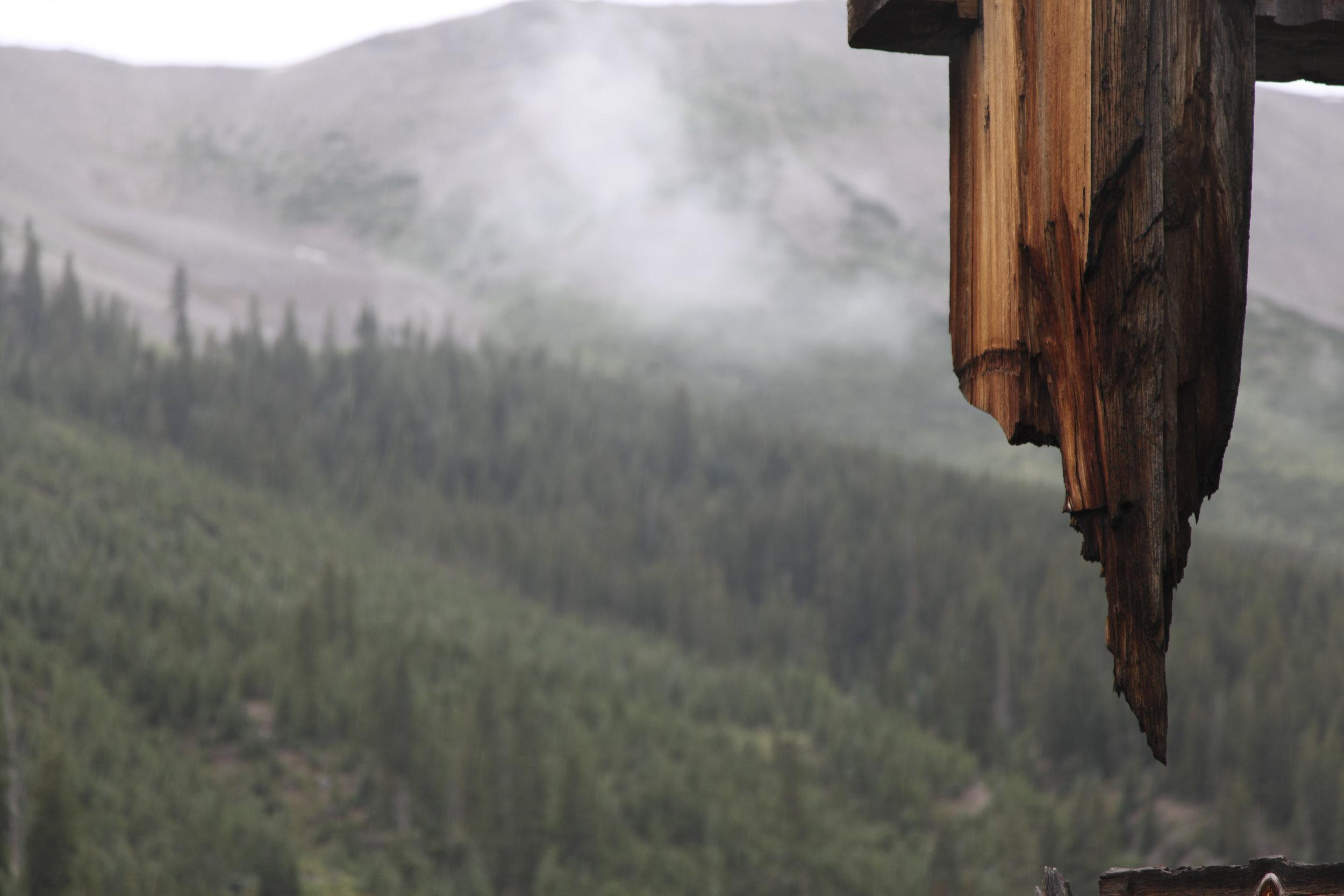 After the rain, Aspen.jpg