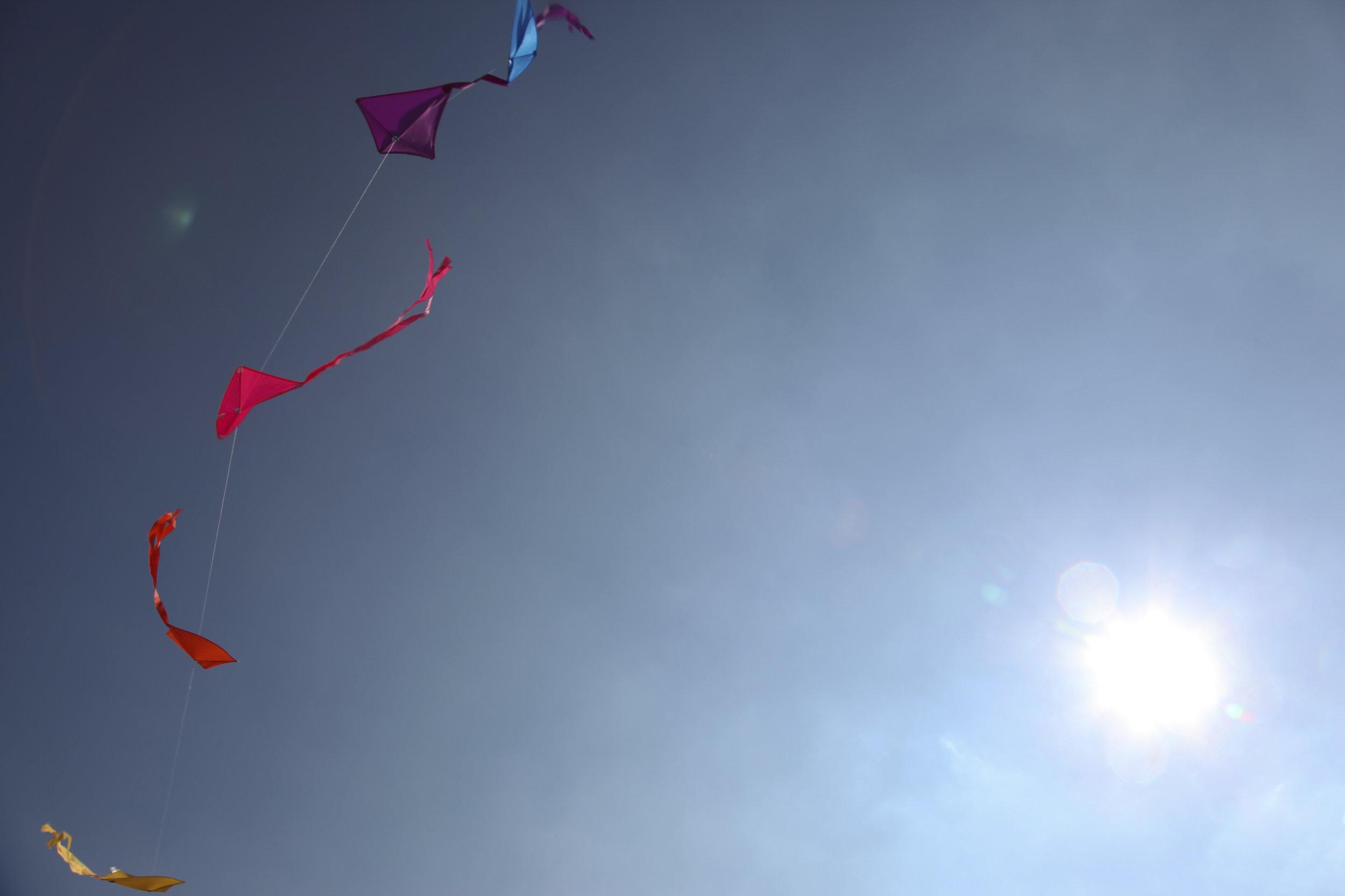 Kit flying, New York.jpg