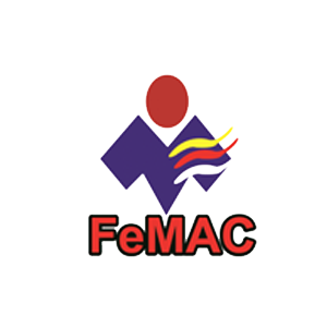 femac-2 final.png