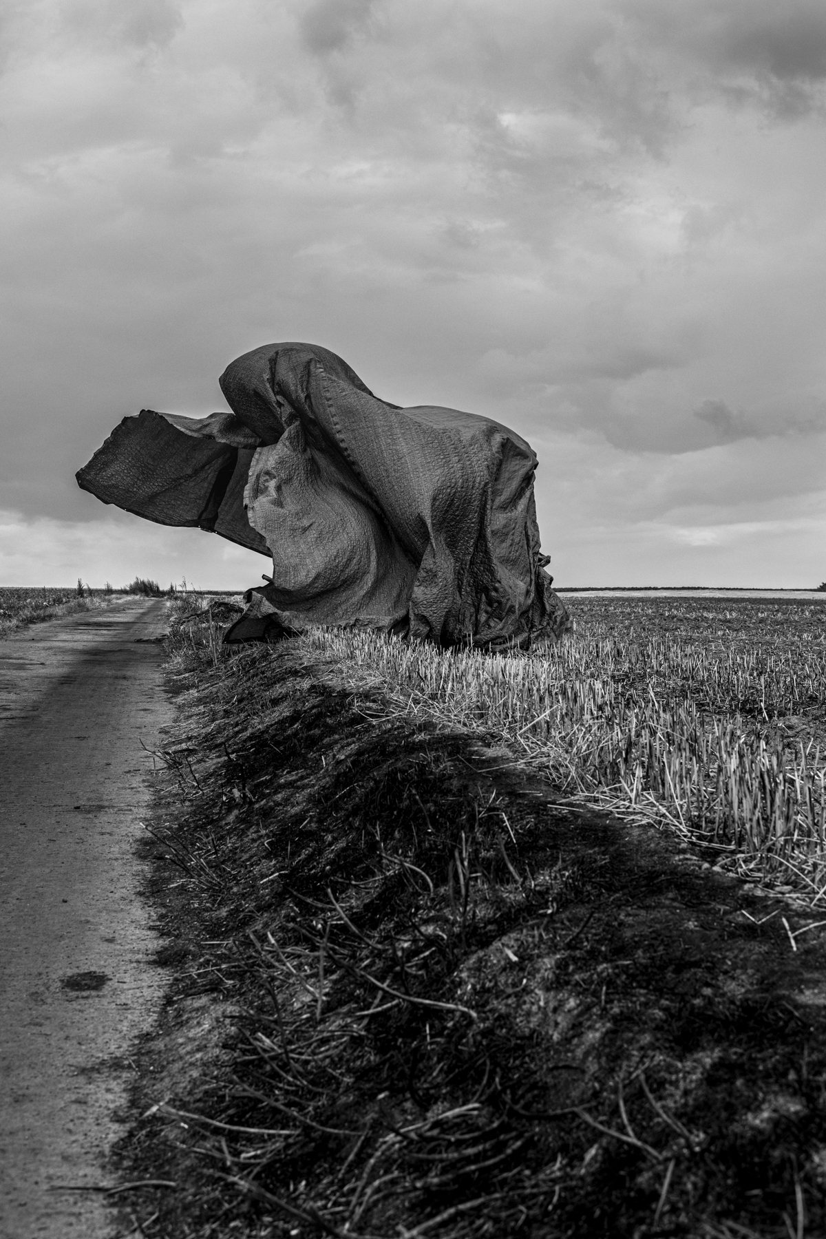 © Sébastien Van Malleghem