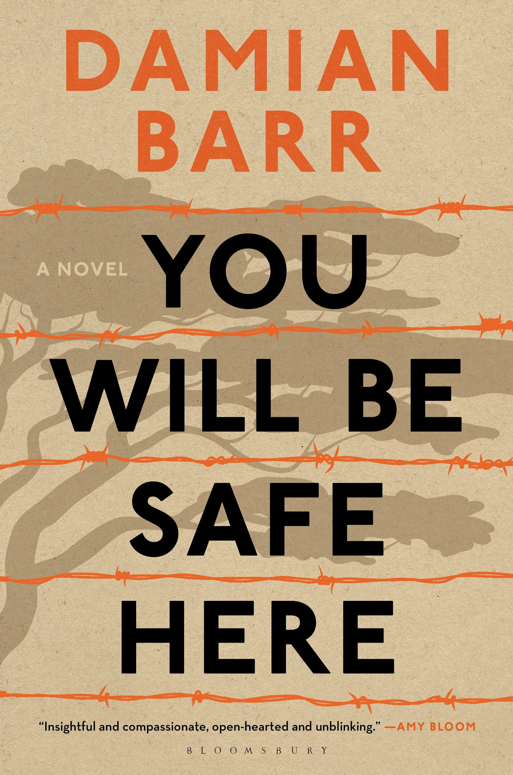 You Will Be Safe Here US book jacket.jpg