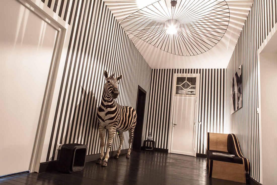 villa-paula-de-coration-zebre.jpg