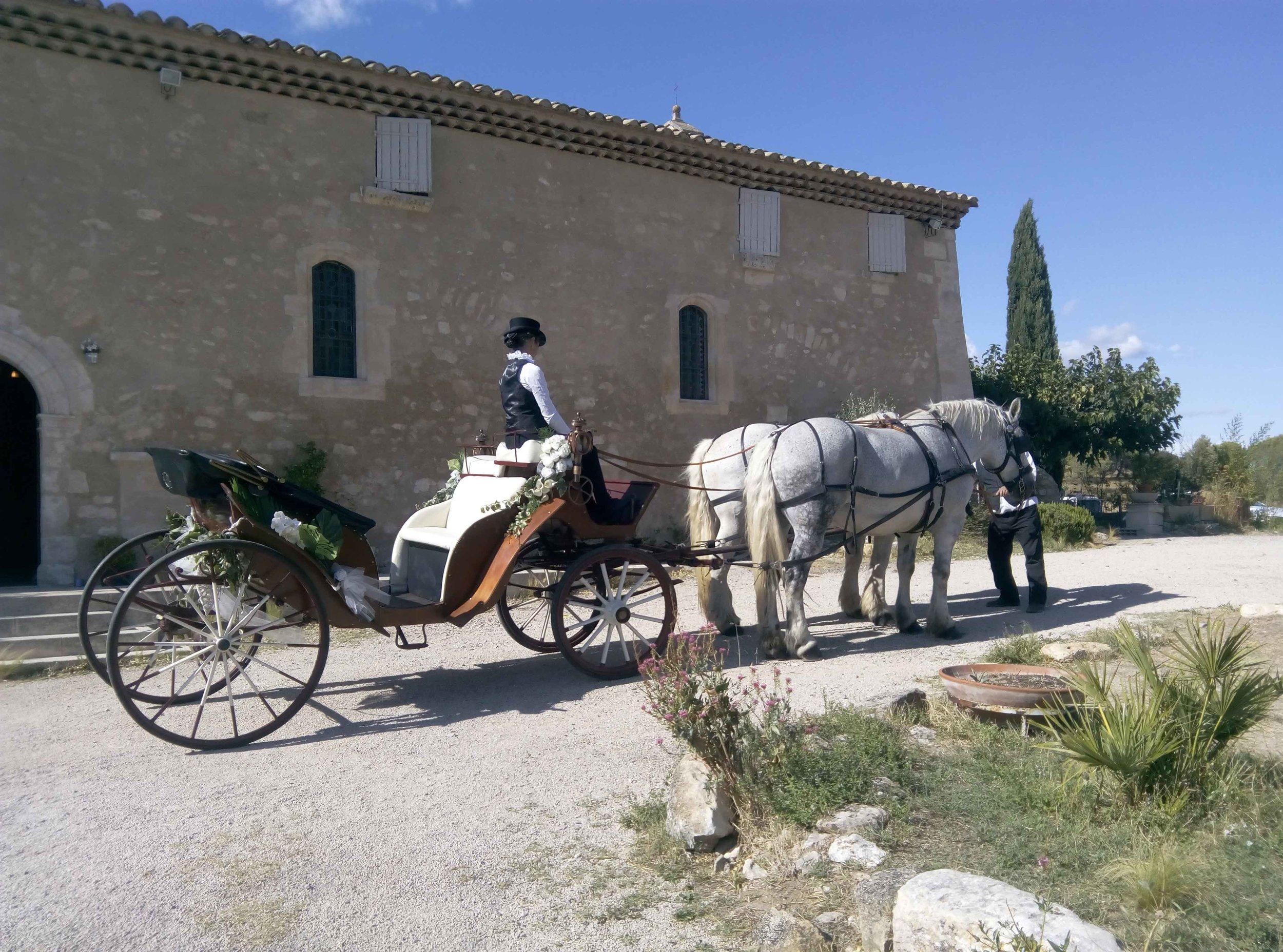Provence calèche tradition