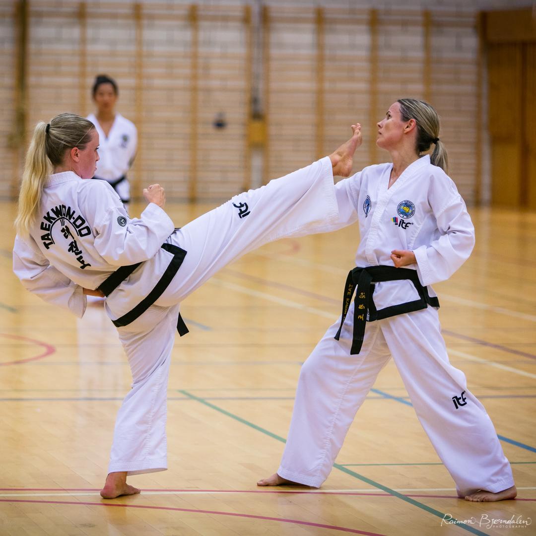 National Taekwon-Do Norway Summer camp 2018