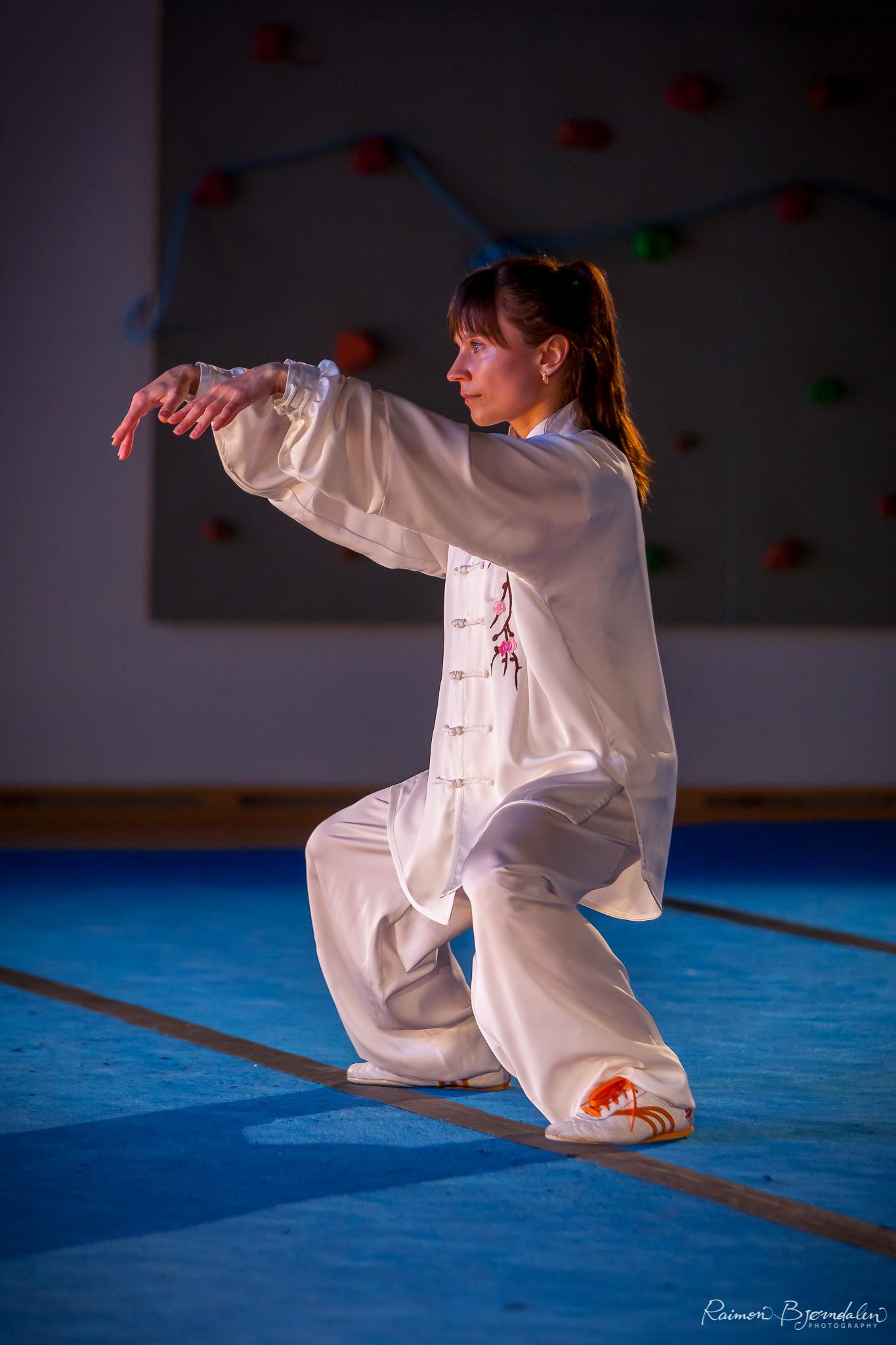 Taichi during Oslo Open Wushu 2015.
