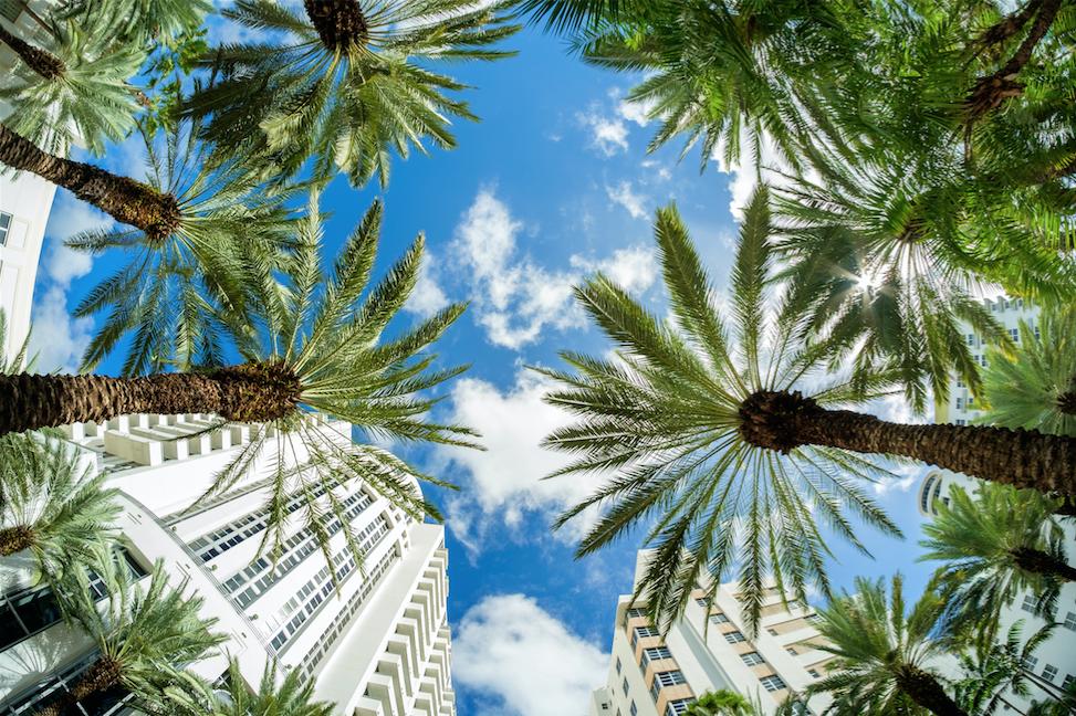 Fort Lauderdale — Allegiant International Reality