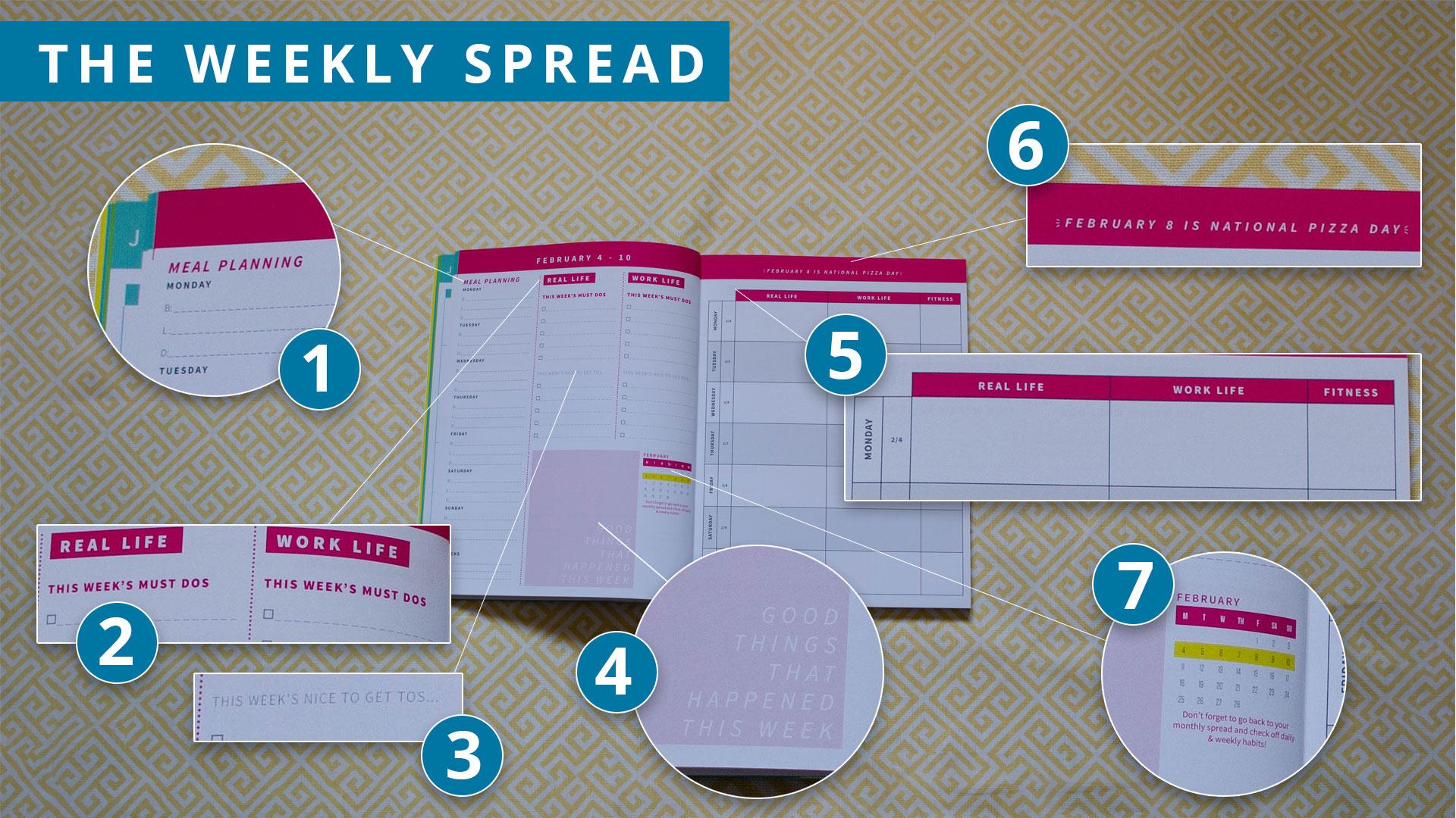 POG-weekly-spread-break-down.jpg