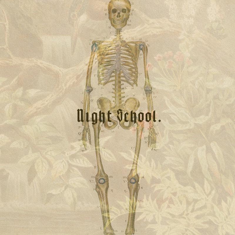 Night School show art
