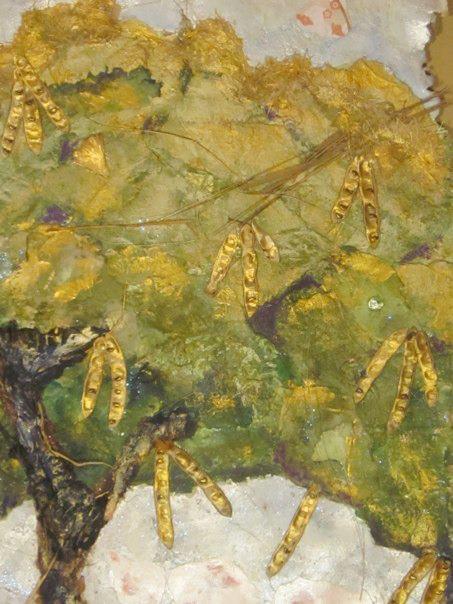acacia tree.jpg