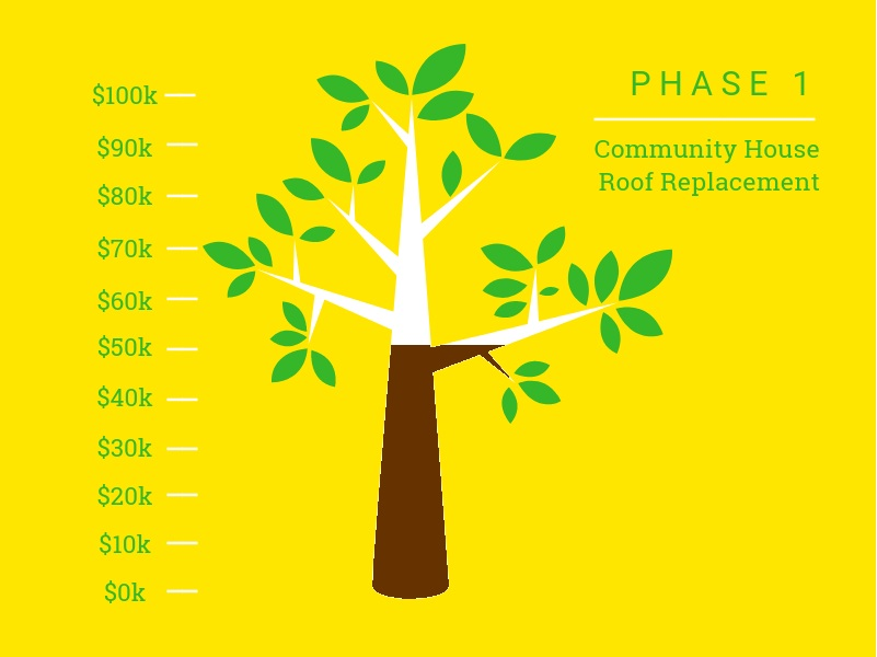 Planting a Seed Campaign, Phase 1