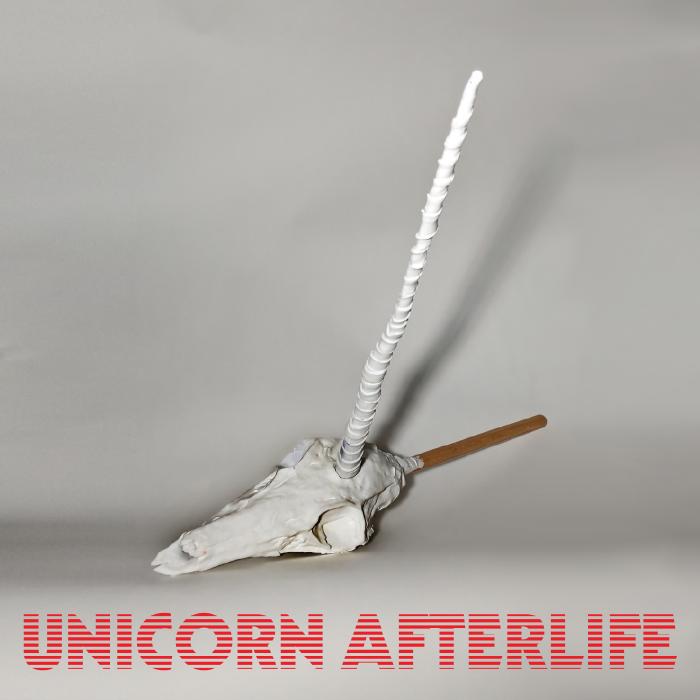 Unicorn-Afterlife.jpg