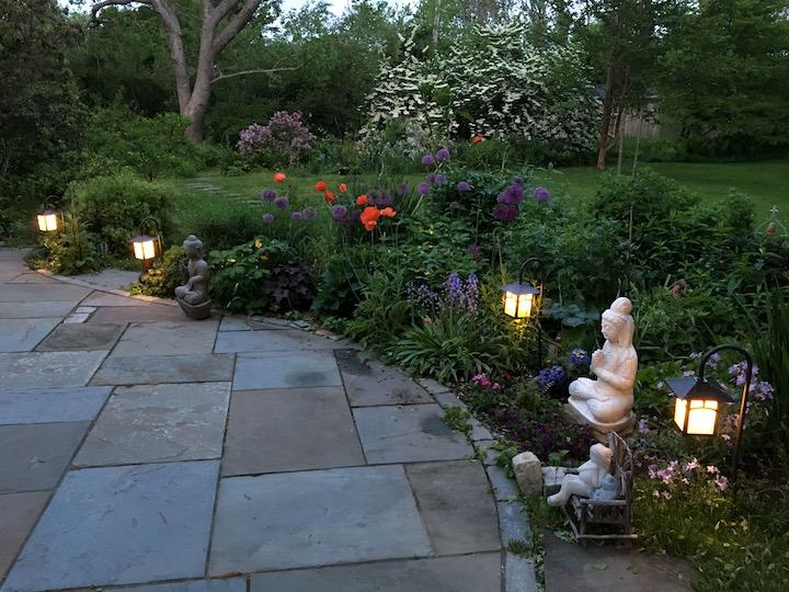 evening garden copy.jpg