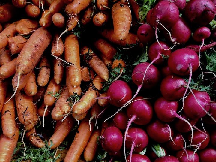 veggie harvest.jpg