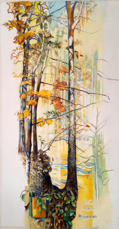 Fall at Helton Creek, Ashe County, NC