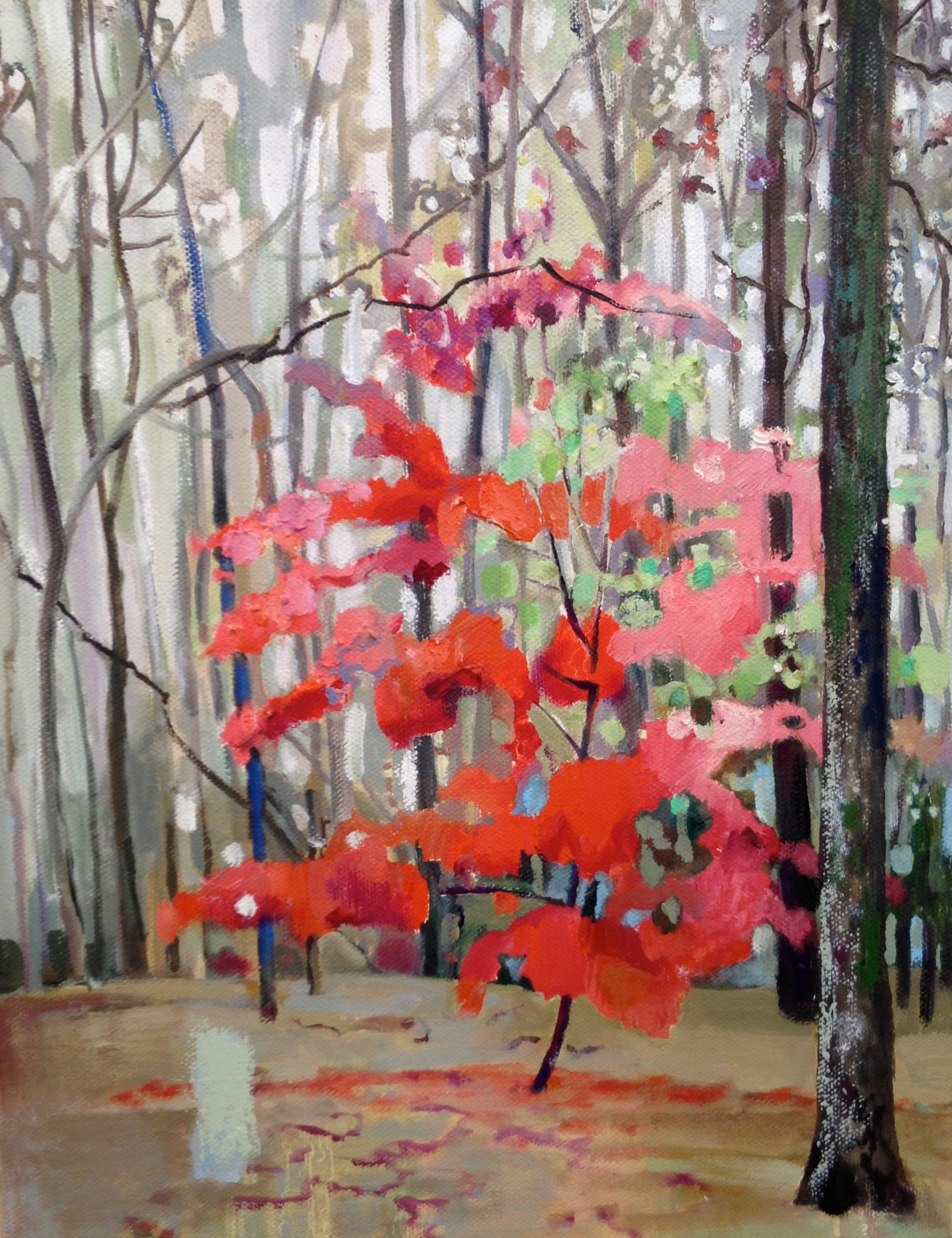 Red Maple, Rainy Day   oil and oil stick  14 x 11 inches, 2016