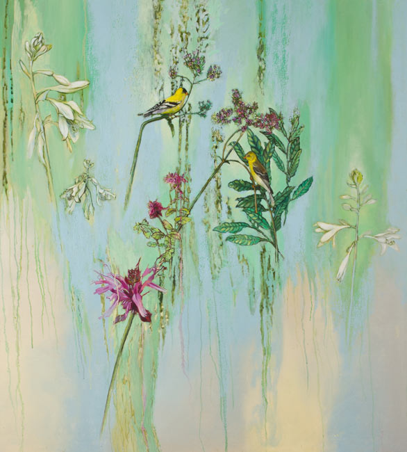 Goldfinch, Stick Verbena and Bee Balm