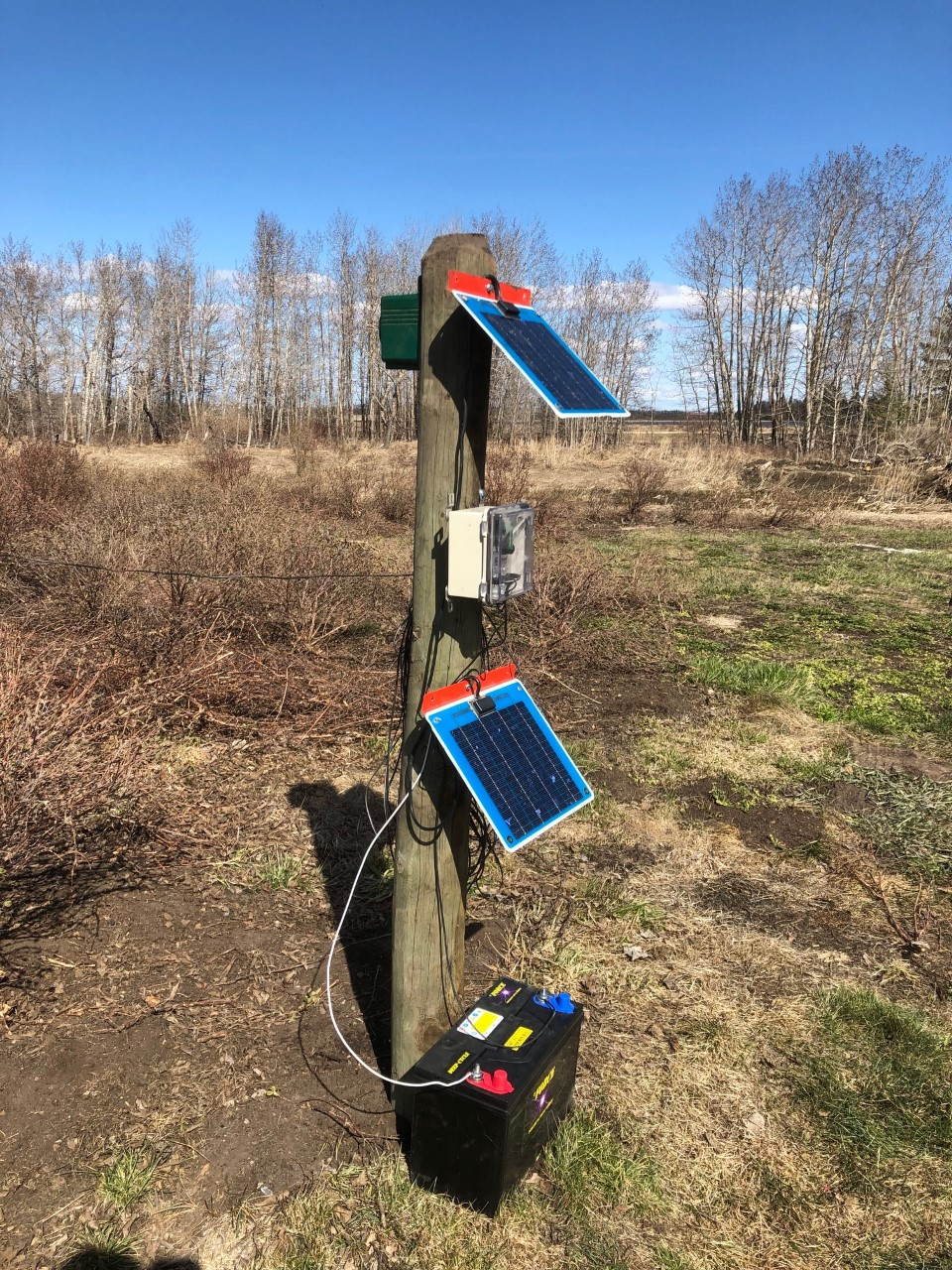 - Bird Gard works by broadcasting digital recordings of actual bird distress calls, at a frequency birds hear and recognize, throughout the protected area. When birds hear Bird Gard's distress calls, they perceive danger and avoid the area as a result.https://www.birdgard.com