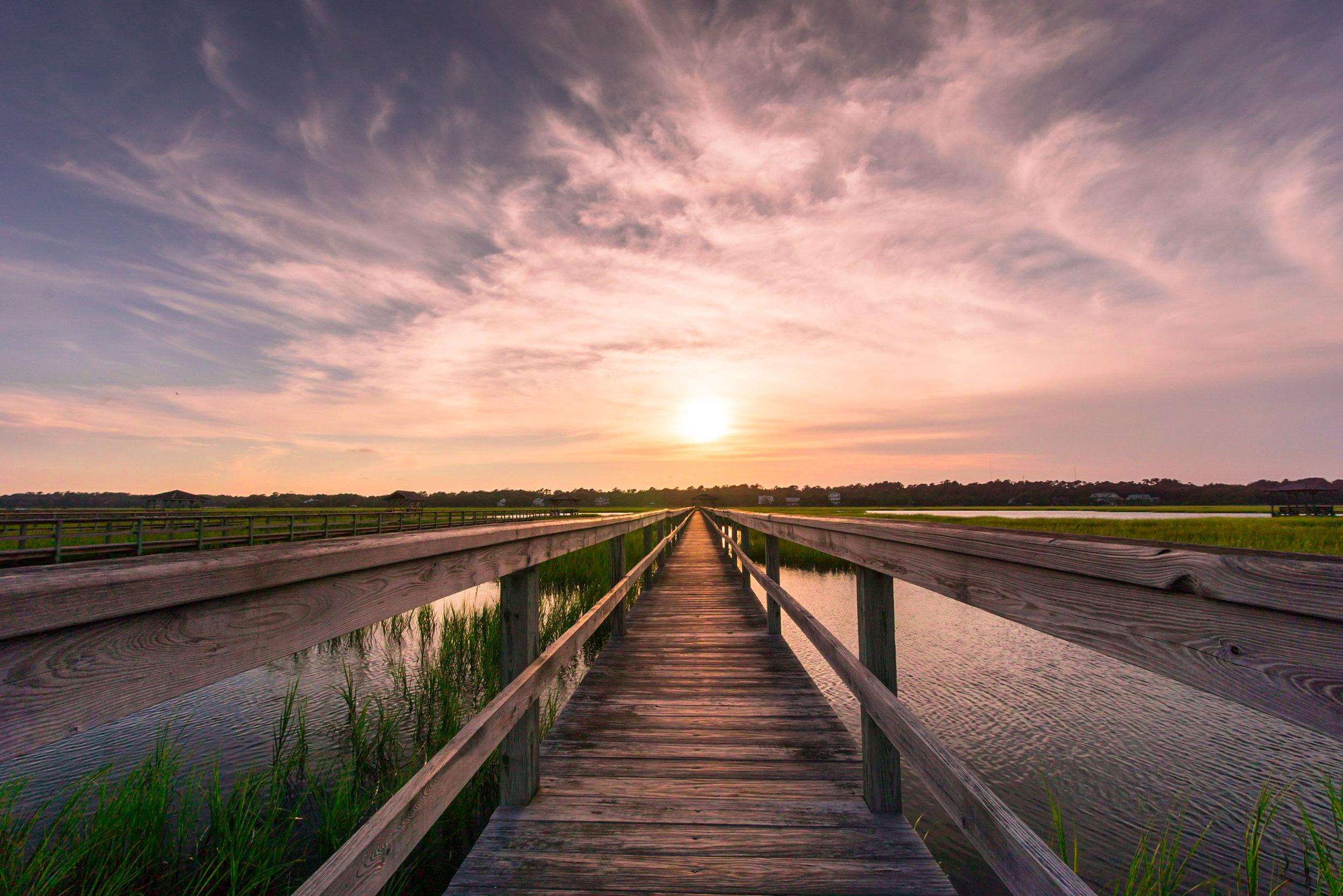 7. The Marsh Melody.jpg