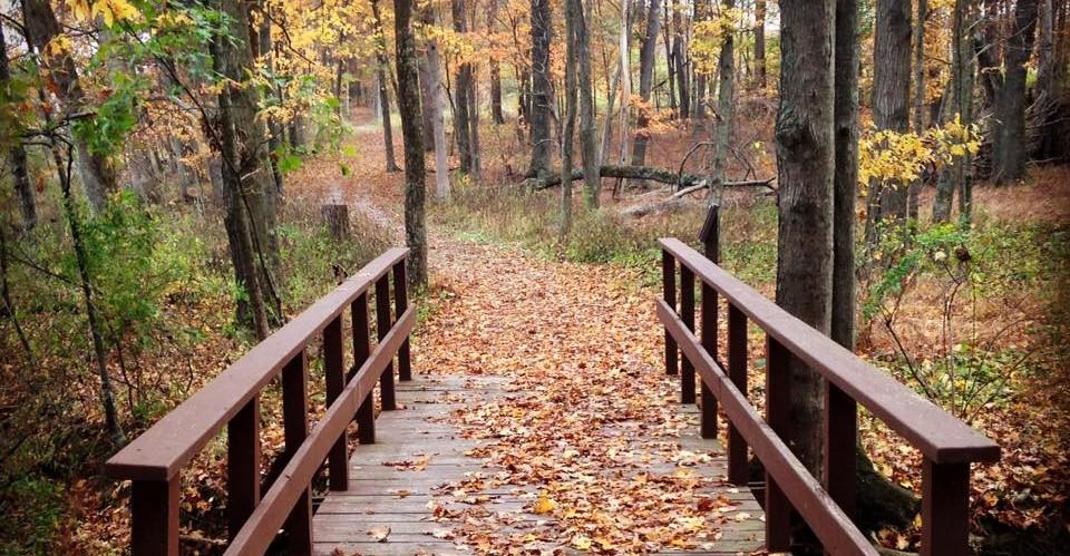 Autumn-bridge-by-Kelley-Gresh-e1433903098977.jpg