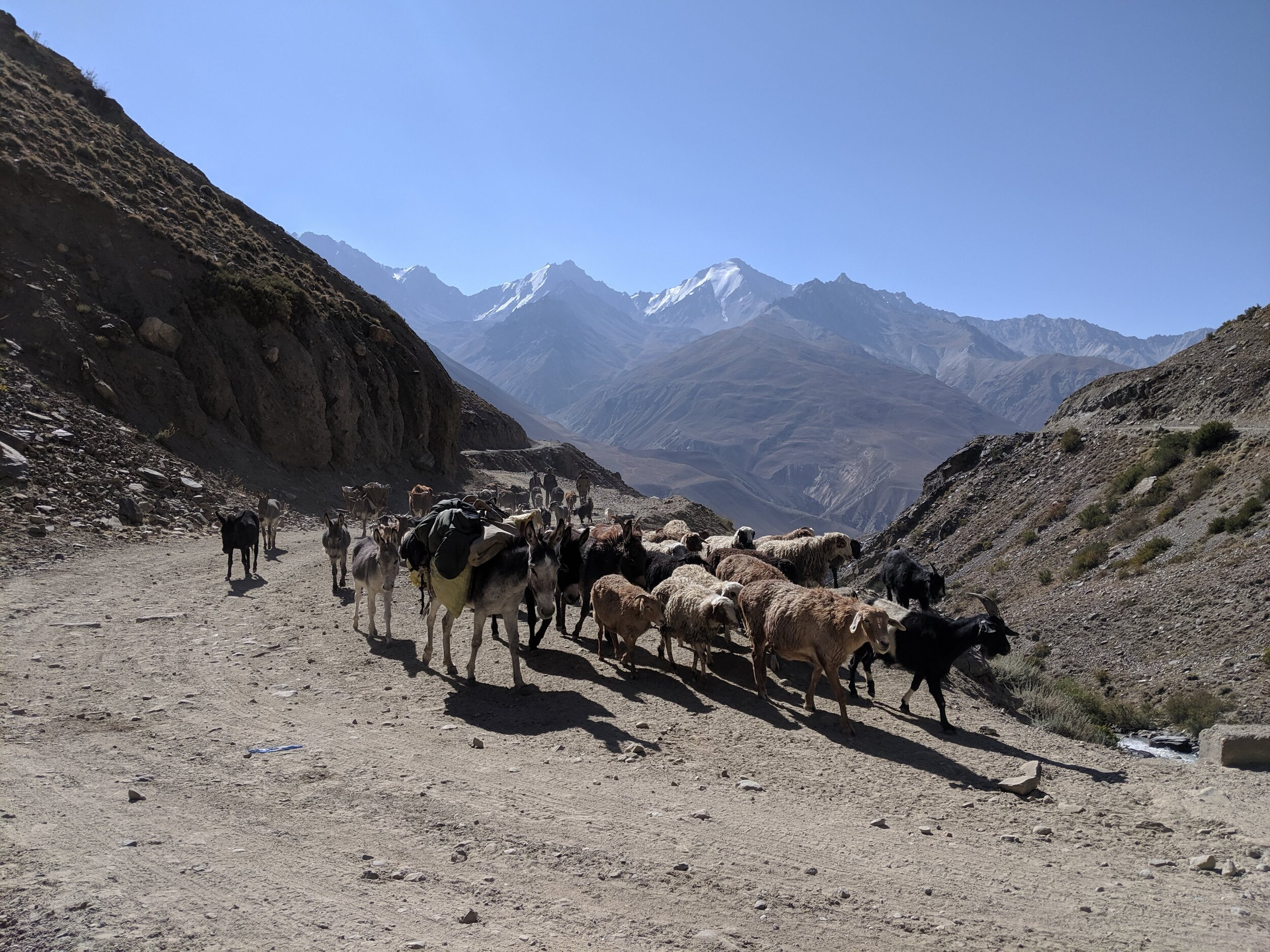 Much more vigilance was required while riding in the Wakhan Valley. PHOTO: JACK EWING