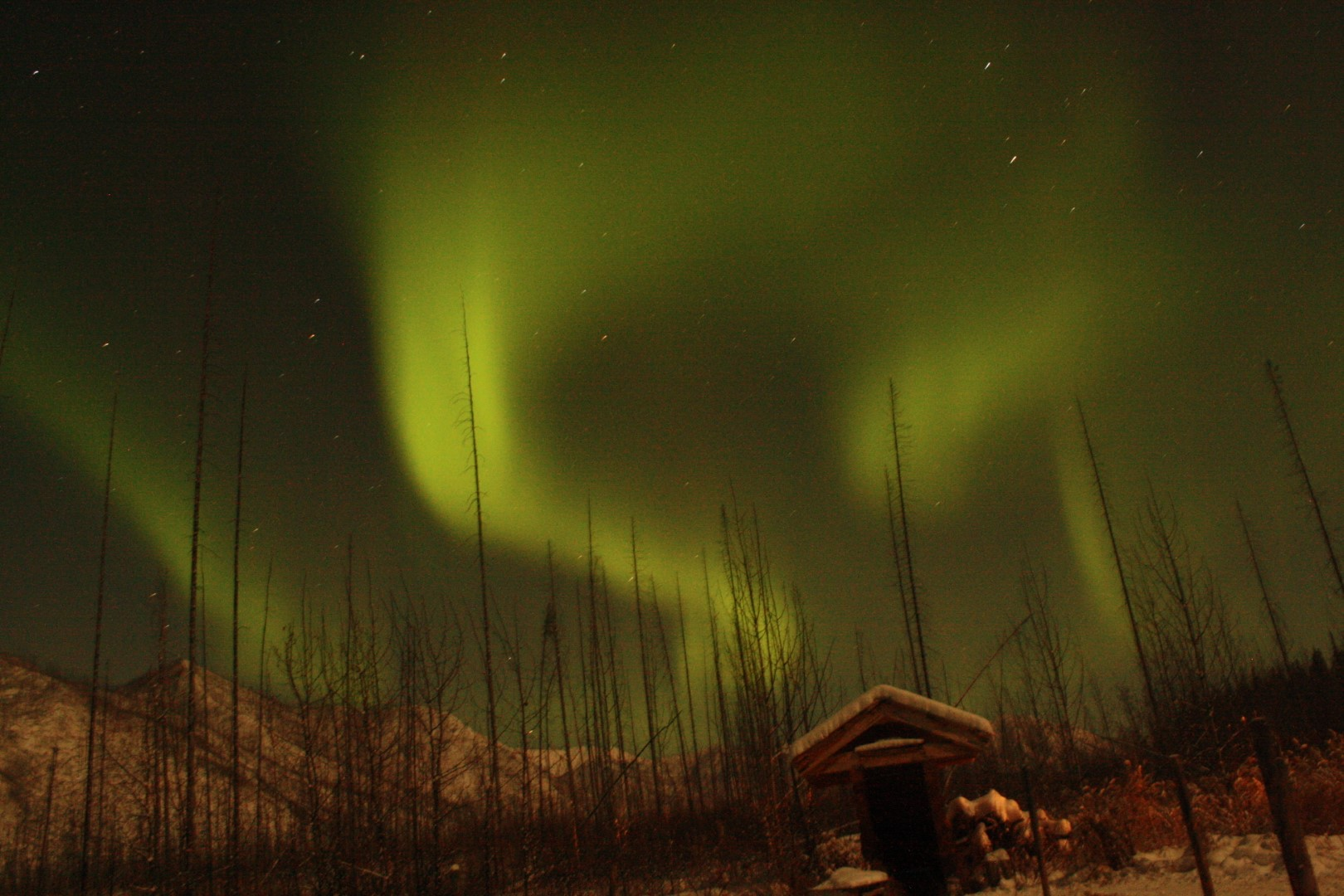 Northern lights (aurora Borealis) alaska