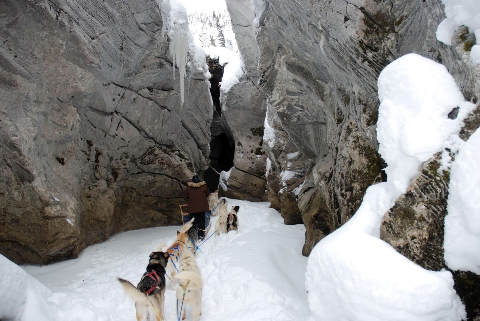 Expedition near Eagle, Alaska