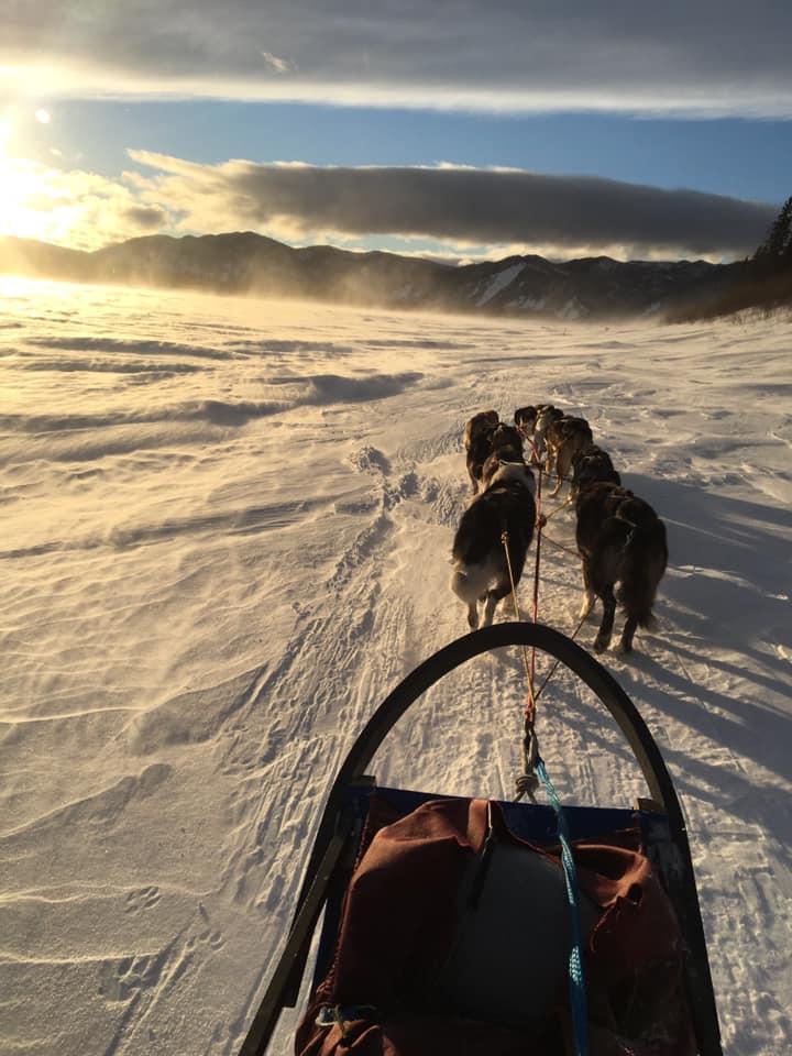 Dog sled National Park Service Yukon Charley Rivers Preserve